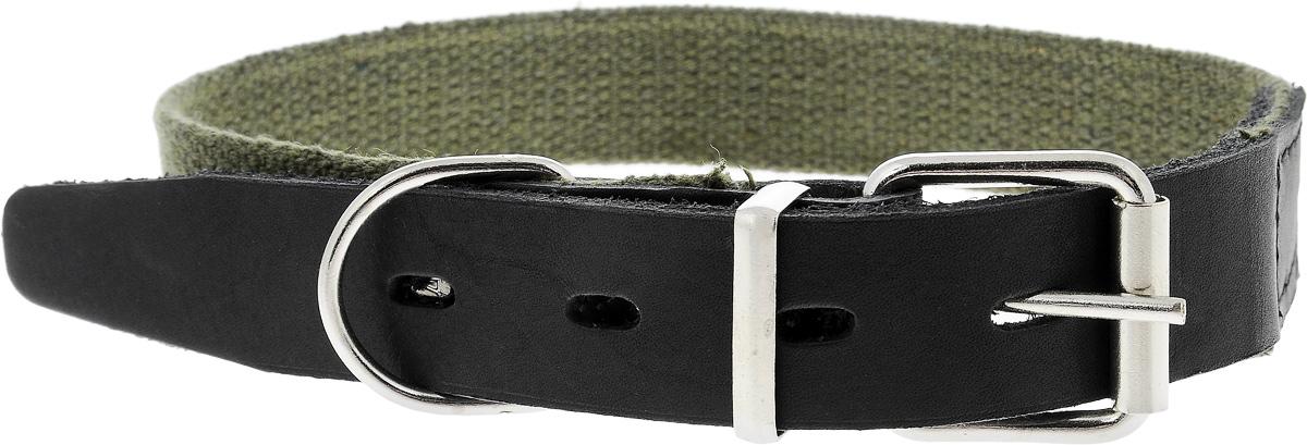 Ошейник брезентовый Каскад Классика, для собак, цвет: зеленый, черный, ширина 2,5 см, обхват шеи 39-46 см125111_зеленыйОшейник для собак Каскад Классика изготовлен из брезентовой ткани и натуральной кожи. Он устойчив к влажности и перепадам температур. Клеевой слой, сверхпрочные нити, крепкие металлические элементы делают ошейник надежным и долговечным. Изделие отличается не только исключительной надежностью и удобством, но и привлекательным дизайном. Размер ошейника регулируется при помощи пряжки, зафиксированной на двух из 4 отверстий. Минимальный обхват шеи: 39 см. Максимальный обхват шеи: 46 см. Ширина ошейника: 2,5 см.