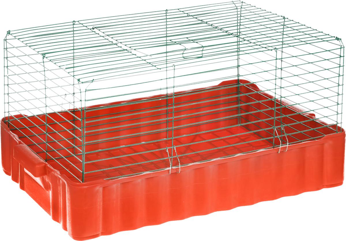 Клетка для кролика ЗооМарк, цвет: красный поддон, зеленая решетка, 79 х 47 х 48 см640_красный, зеленыйКлассическая клетка ЗооМарк со сплошным дном станет уединенным личным пространством и уютным домиком для кролика. Изделие выполнено из металла и пластика. Клетка надежно закрывается на защелки. Легко чистится. Для более удобной транспортировки клетку можно сложить.