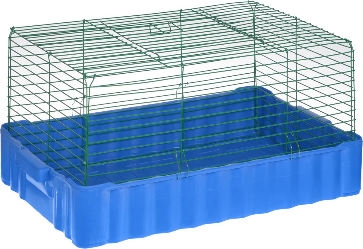 Клетка для кролика ЗооМарк, цвет: синий поддон, зеленая решетка, 79 х 47 х 48 см640_синий, зеленыйКлассическая клетка ЗооМарк со сплошным дном станет уединенным личным пространством и уютным домиком для кролика. Изделие выполнено из металла и пластика. Клетка надежно закрывается на защелки. Легко чистится. Для более удобной транспортировки клетку можно сложить.