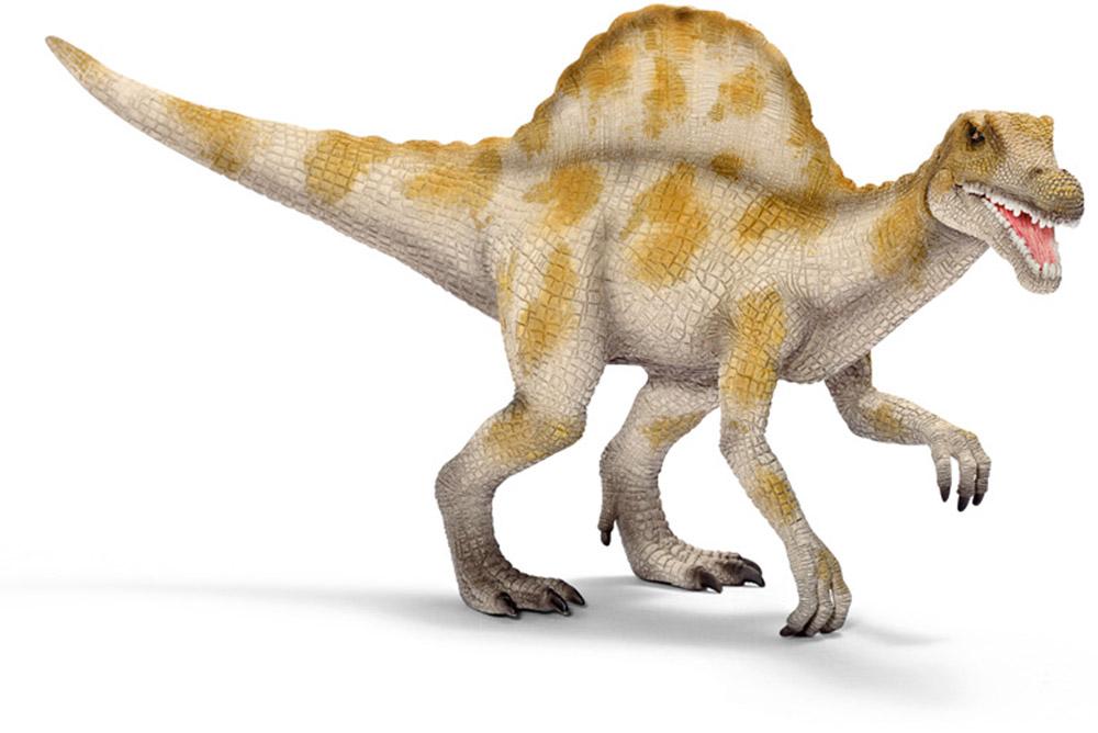 Schleich Фигурка Спинозавр 1452114521Спинозавр - ящер из семейства спинозавридов, берущий свое название из латинского языка. Spinosaurus дословно означает ящер спинного хребта. Впервые останки этих ящеров были найдены в Египте в XX столетии. Спинозавр имеет характерный для него спинной хребет. Длина отростков хребта cпинозавра доходила до 1,7 метра в высоту. Спинозавры - крупнейшие животные, питавшиеся плотью других животных, превосходящих в размерах гиганотозавра и тираннозавра. Взрослый спинозавр достигал 17 метров в высоту и весил от 4 до 10 тонн, имел относительно небольшие передние лапы и быстро передвигался на длинных задних лапах. Фигурка Schleich Спинозавр имеет подвижную нижнюю челюсть.