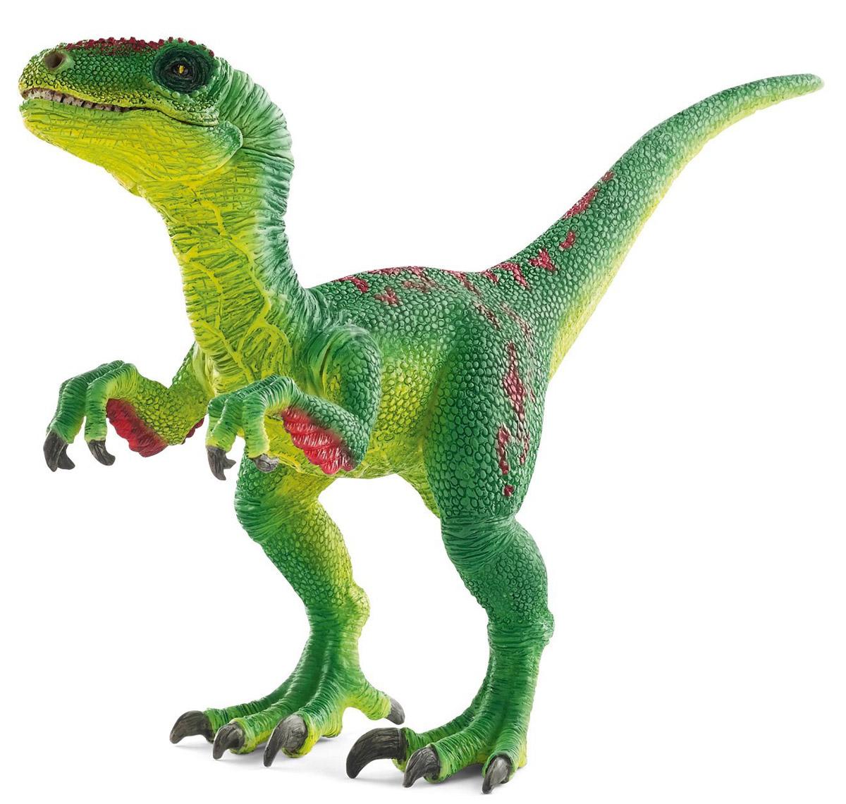 Schleich Фигурка Велоцираптор 1453014530Велоцираптор - древнее животное, проживавшее на земле в доисторический период. Быстрый и ловкий динозавр не отличался внушительными размерами, но у него были мощные и довольно острые зубы и когти, которые помогали ему добывать пищу и обороняться. Изящный динозавр зеленого цвета, стоящий на задних лапах, станет достойным пополнением уникальной коллекции фигурок Schleich. У фигурки подвижная нижняя челюсть и передние лапы, что позволяет устраивать увлекательные игры с забавными существами. Фигурка Schleich Велоцираптор приятна на ощупь, выполнена из качественного каучукового пластика.