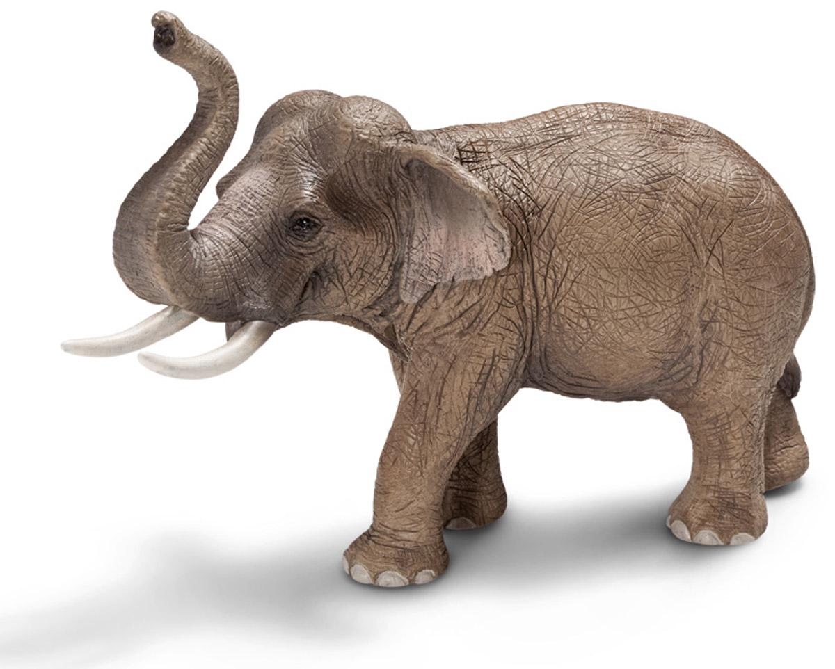 Schleich Фигурка Азиатский слон14653Азиатский слон - животное, которое прекрасно приручается, слонов часто используют в качестве рабочей силы. Азиатские слоны живут в семейных группах, которые составляют от двух до десяти слонов. Считается, что слоны способны сопереживать своим соплеменникам, хранить воспоминания о том, когда бывает засуха, или о том, где расположено хорошее пастбище. Фигурка Schleich Азиатский слон выполнена из каучукового пластика с максимальной точностью, фигурка раскрашивалась вручную.