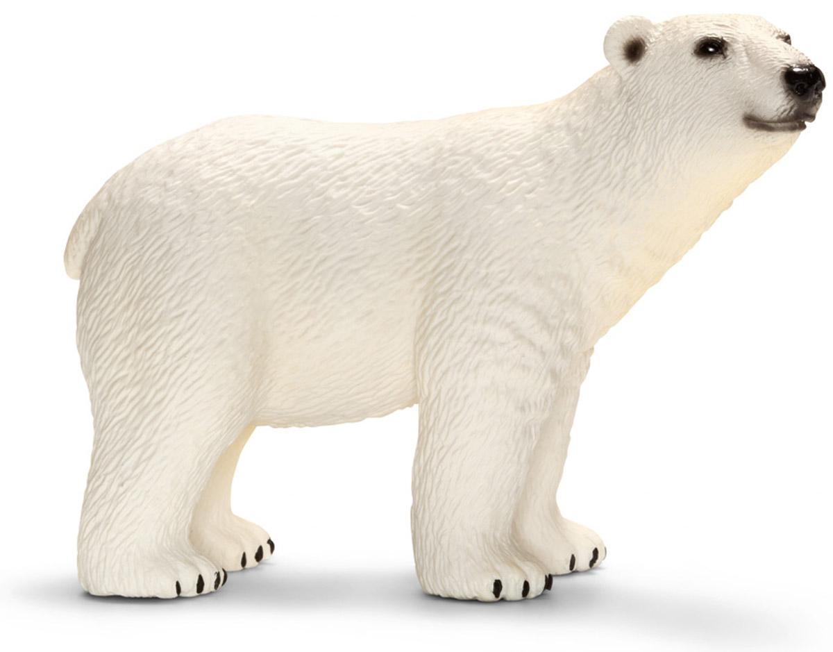 Schleich Фигурка Белый медведь14659Мир из снега и льда кажется непригодным для жизни, однако здесь живет множество животных, прекрасно адаптированных к суровым холодам. Белый медведь - наряду с гризли является самым крупным наземным хищным животным на земле. Средний медведь весит около 500 кг, длина животного около 3 м, этот медведь в два раза больше сибирских тигров. Толстый слой подкожного жира позволяет белому медведю выдерживать крайне низкую температуру в Арктике. Все фигурки Schleich изготовлены из гипоаллергенных высокотехнологичных материалов, раскрашены вручную и не вызывают аллергии у ребенка.
