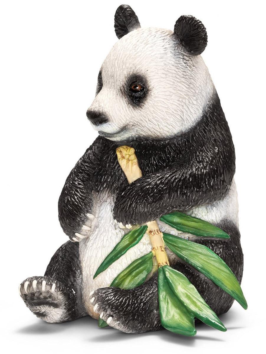 Schleich Фигурка Панда 1466414664Гигантская панда - известный черно-белый член семьи медведей. Панда обожает бамбук. Во время еды они стоят на задних лапах, так что их передние лапы могут держать пищу, совсем как у человека. Очень небольшое число панд живет в дикой природе, эти животные находятся под угрозой вымирания. Все фигурки выполнены из высококачественных материалов с максимальной точностью и раскрашены вручную. Не вызывают аллергии. Великолепно выполненная фигурка Schleich Панда, созданная при тесном сотрудничестве с Берлинским зоопарком, никого не оставит равнодушным.