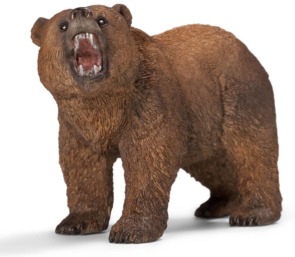 Schleich Фигурка Медведь гризли14685Медведь гризли - самый большой и опасный медведь в Северной Америке. Встречается на Аляске и в Западной Канаде. Гризли достигает размеров до трех метров, а массой бывает до 500 кг. Имеет мощные челюсти. Шерсть темно- коричневого цвета, на концах серая. Гризли любит ловить рыбу, так же он разоряет улья диких пчел. Гризли часто нападет на человека. Фигурка Schleich Медведь гризли прекрасно разнообразит игру вашего ребенка и станет отличным пополнением коллекции его фигурок. Все фигурки Schleich изготовлены из гипоаллергенных высокотехнологичных материалов, раскрашены вручную и не вызывают аллергии у ребенка. Прекрасно выполненные фигурки отличаются высочайшим качеством игрушек ручной работы. Все они создаются при постоянном сотрудничестве с Берлинским зоопарком, а потому являются максимально точной копией настоящих животных. Каждая фигурка разработана с учетом исследований в области педагогики и производится как настоящее произведение для маленьких...