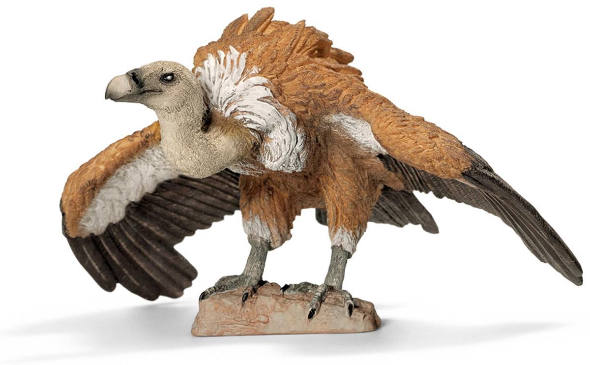 Schleich Фигурка Белоголовый гриф14691Фигурка Schleich представлена в виде белоголового грифа на камне, грациозно расправившего свои широкие крылья перед полетом. Фигурка выполнена с уникальной точностью с ручной прорисовкой мельчайших деталей. Компания Schleich специализируется на выпуске детских игрушек, знакомящих с окружающей средой, развивающих творческое мышление, мелкую моторику рук. Фигурка изображает крупного грифа с длинными крыльями и широким хвостом. Оперение птицы имеет бурый цвет с темно-коричневым крыльями. Эти птицы отличаются непропорционально маленькой, покрытой белым пухом головой, длинной вытянутой шеей с белым воротником из перьев. Мощный крючковатый клюв и острые когти - главное оружие грифа.