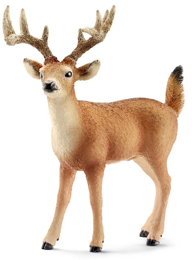 Schleich Фигурка Олень 1470914709Фигурка североамериканского белохвостого оленя с рогами, черным носиком и глазками, обязательно понравится всем любителям этих грациозных животных и станет прекрасным пополнением вашей коллекции фигурок. Олени являются травоядными животными и обитают обычно небольшими группами. В период холодов самцы меняют свою шкуру с красноватым оттенком на более темную - коричневую. Фигурка Schleich Олень изготовлена из гипоаллергенных высокотехнологичных материалов, раскрашена вручную и не вызывает аллергии у ребенка.