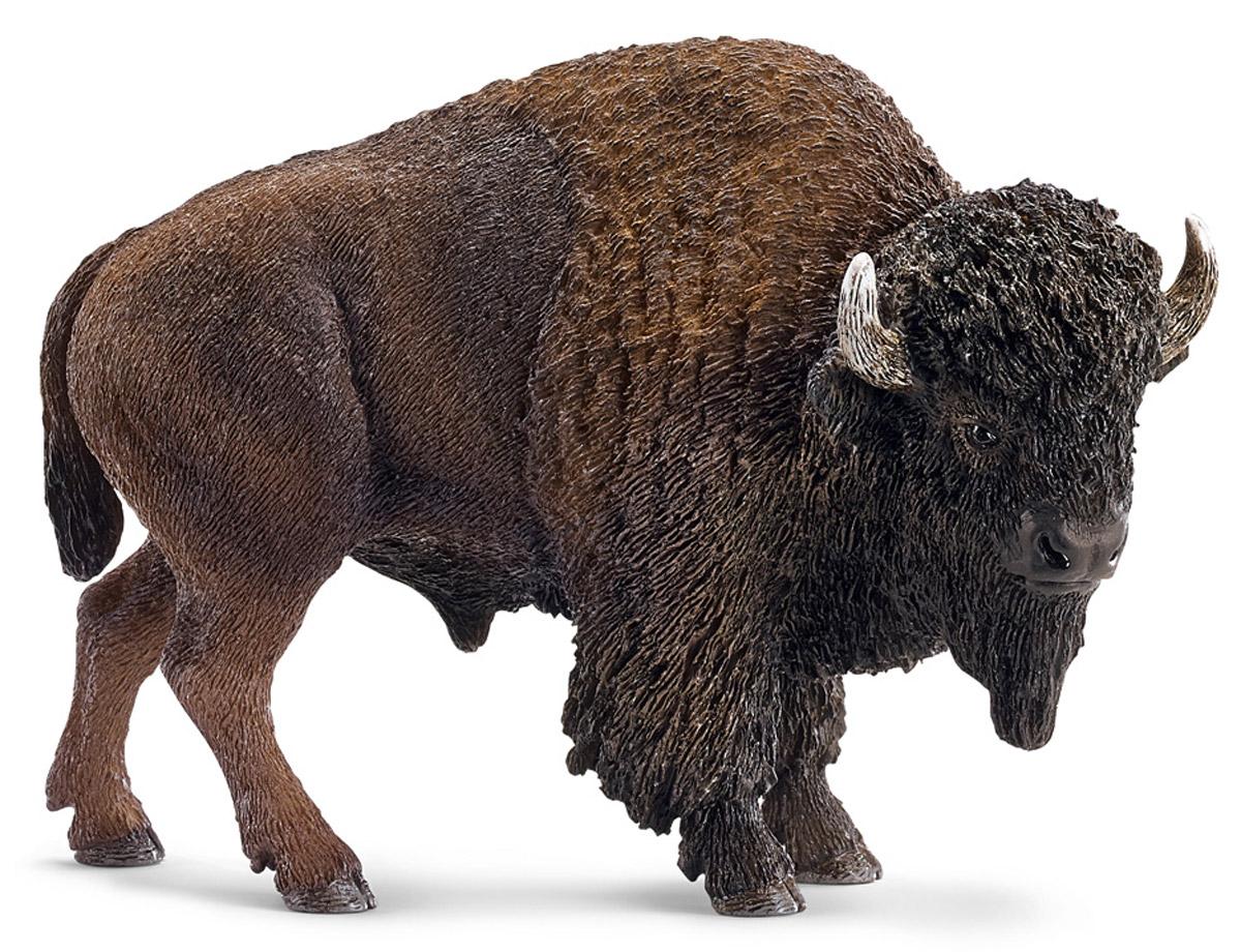 Schleich Фигурка Американский бизон14714Бизоны - одни из самых крупных и мощных млекопитающих, которые могут достигать 180 см в высоту. Бизоны живут стадами и являются травоядными животными, что не мешает им быть мощными и агрессивными. Фигурки Schleich выполнены из безопасного для здоровья детей каучукового пластика с максимальной точностью, каждая фигурка раскрашивается вручную. Реалистичные фигурки детально точно воспроизводят настоящих животных, обитателей различных стран. Ребенок сможет изучать особенности их строения, поведения и питания. Фигурки Schleich - превосходный педагогический материал для использования дома и в образовательных учреждениях.