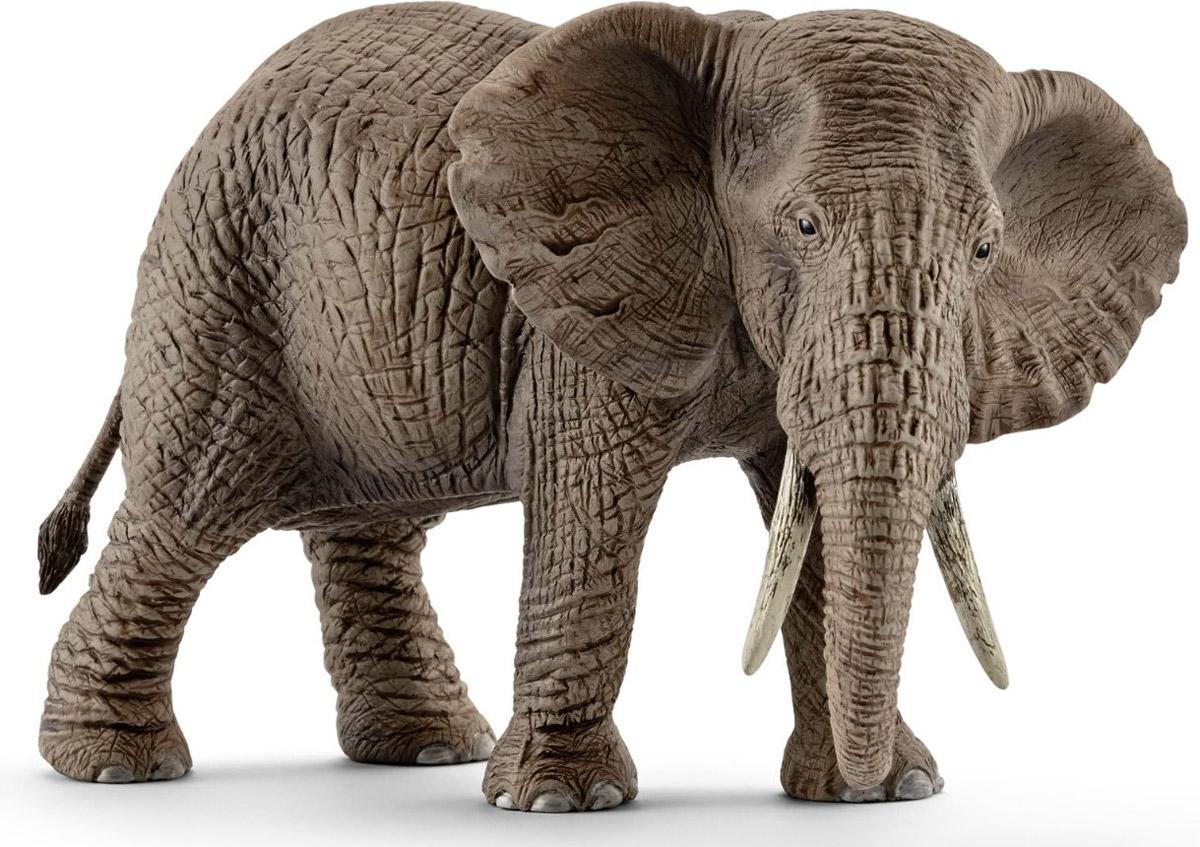 Schleich Фигурка Африканская слониха14761Африка - континент больших табунов, опасных хищников, серых великанов и невообразимого разнообразия видов. Африканский слон - самое крупное животное на земле. Интересная особенность - у африканского слона - 4 пальца на передних ногах и 5 на задних. С помощью своего длинного и гибкого хобота африканские слоны общаются друг с другом через осязание и обоняние. Фигурка Schleich Африканская слониха порадует всех маленьких любителей животных и станет достойным дополнением коллекции диких животных. Фигурки Schleich выполнены из безопасного для здоровья детей каучукового пластика с максимальной точностью, каждая фигурка раскрашивается вручную. Реалистичные фигурки детально точно воспроизводят настоящих животных, обитателей различных стран. Ребенок сможет изучать особенности их строения, поведения и питания. Фигурки Schleich - превосходный педагогический материал для использования дома и в образовательных учреждениях.