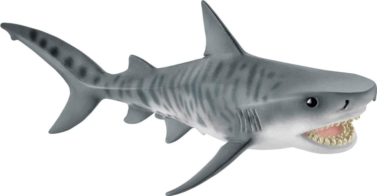 Schleich Фигурка Тигровая акула14765Фигурка Schleich Тигровая акула станет прекрасным пополнением коллекции фигурок и разнообразит игру вашего ребенка. Фигурка, раскрашенная вручную, выполнена из безопасного материала - пластика. Компания Schleich специализируется на выпуске детских игрушек, знакомящих с окружающей средой, развивающих творческое мышление, мелкую моторику рук. Тигровые акулы очень большие и могут достигать в длину 5,5 метров. На поверхности их тела имеются заметные полосы, что отличает их от других. Тигровые акулы обычно питаются черепахами. Их рацион включает также скатов, морских змей, тюленей и птиц.