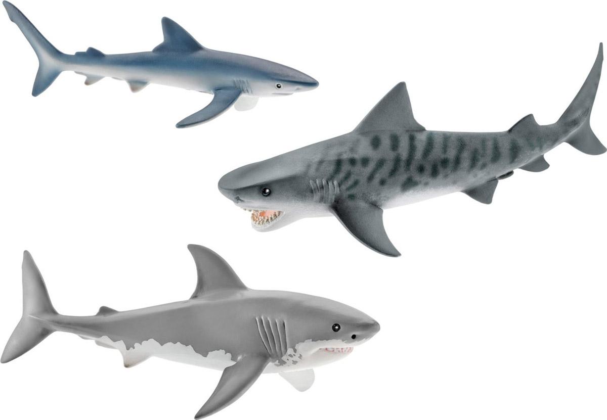 Schleich Набор фигурок Акулы 3 шт41448Набор фигурок Schleich Акулы придется по душе вашему ребенку! Прекрасно выполненные фигурки отличаются высочайшим качеством игрушек ручной работы. В набор входят 3 фигурки самых опасных акул на нашей планете: белая, синяя и тигровая. Набор позволит познакомить ребенка с морскими обитателями и рассказать об этих хищных рыбах. Каждая фигурка разработана с учетом исследований в области педагогики и производится как настоящее произведение для маленьких детских ручек. Сюжетно-ролевые игры с фигурками развивают фантазию и воображение ребенка. Фигурки Schleich - превосходный педагогический материал для использования дома и в образовательных учреждениях.