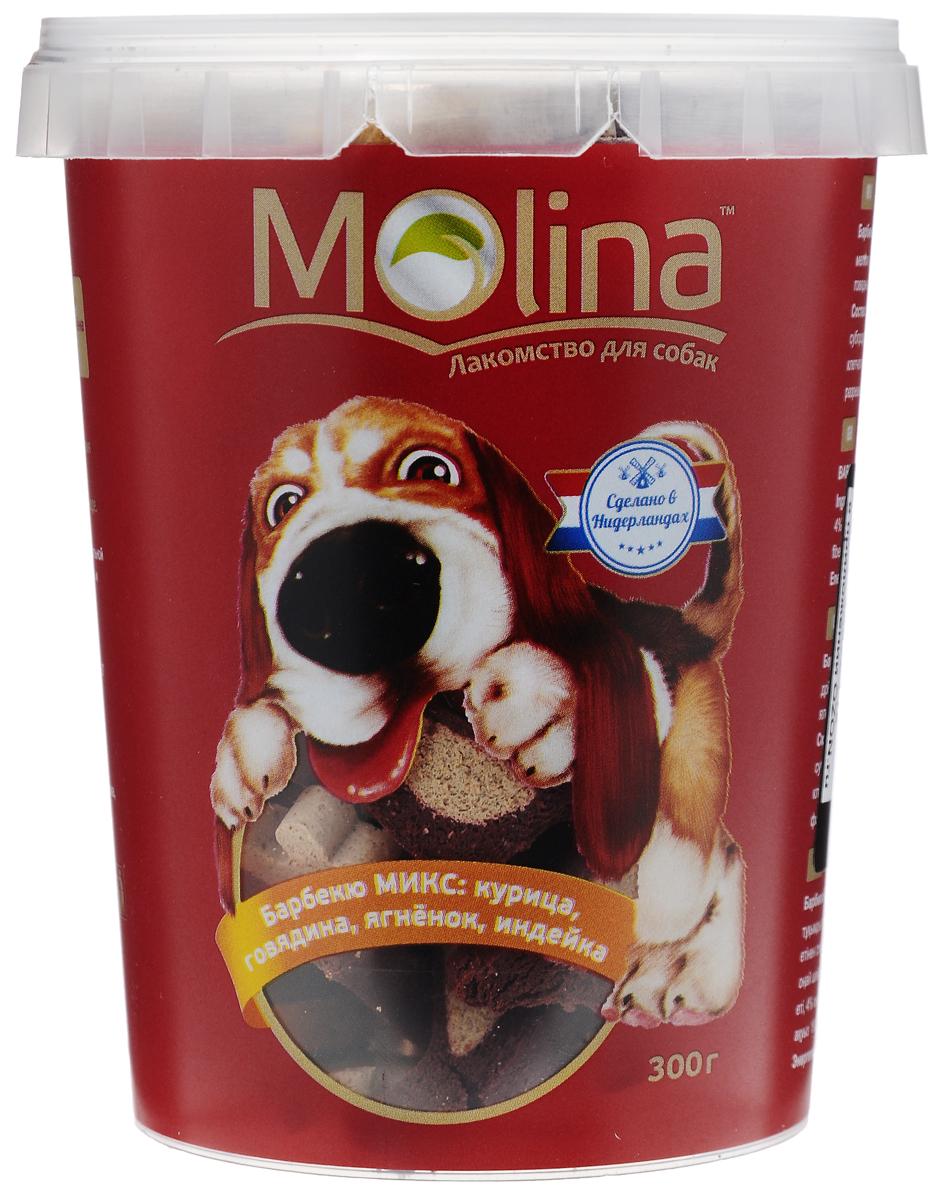 Лакомства для собак Molina Барбекю микс, с курицей, говядиной, ягненком и индейкой, 300 г4680265020454Лакомство для собак Molina Барбекю микс изготовлены из мяса курицы, говядины, ягненка и индейки. Гипоаллергенное лакомство прекрасно подходит для тренировки и поощрения питомца. Мясные косточки легко жуются и имеют приятный вкус. Предназначены для собак мелких и средних пород, а также щенков старше 4 месяцев. Товар сертифицирован.