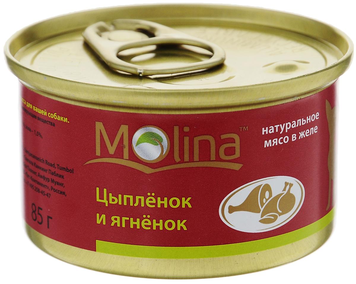 Консервы для собак Molina, с цыпленком и ягненком в желе, 85 г4620002671020Консервы для собак Molina - это высококачественный, сбалансированный, натуральный продукт, который содержит все необходимые компоненты, обеспечивающие организм ваших питомцев энергией, витаминами и минеральными веществам, необходимыми для здорового роста и развития. Консервы изготовлены из натурального мяса цыпленка и ягненка в желе. Консервы Molina - польза натуральных ингредиентов для долгой и здоровой жизни вашего питомца. Товар сертифицирован.