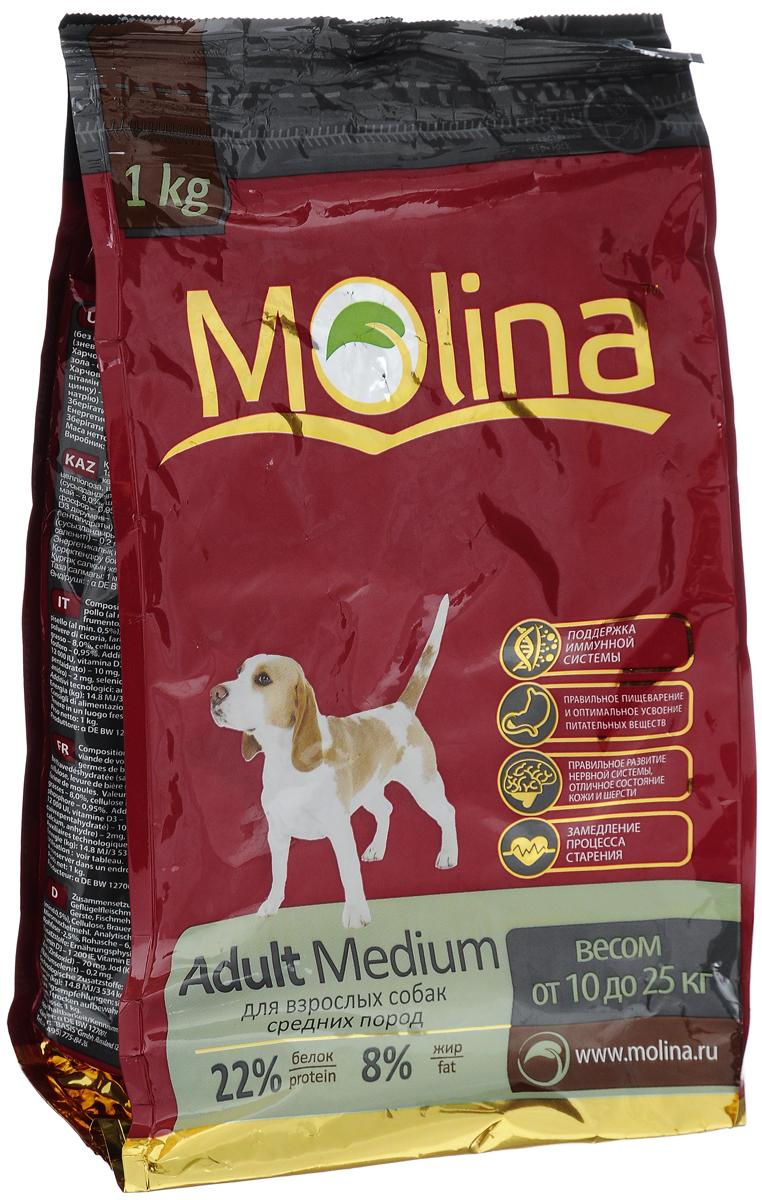 Корм сухой Molina Adult Medium для взрослых собак средних пород, 1 кг4680265000951Полнорационный сухой корм Molina Adult Medium предназначен для взрослых собак средних пород весом от 10 до 25 кг. Специальный комплекс витаминов и антиоксидантов способствует поддержанию иммунитета, замедляет процесс старения и защищает от последствий стресса. Содержание жирных кислот Омега-6 и Омега-3 обеспечивает правильное развитие нервной системы и отличное состояние кожи и шерсти. Вкусовая формула и состав корма позволяют оптимально усваивать питательные вещества. Товар сертифицирован.