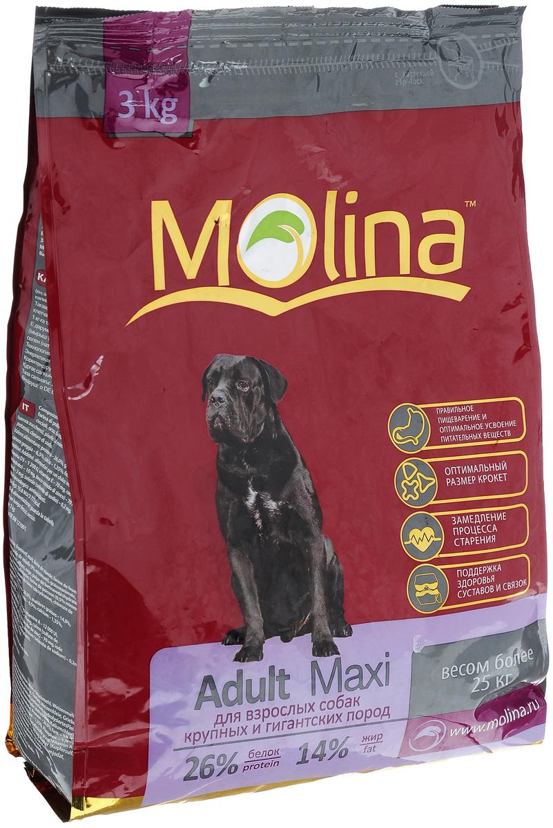 Корм сухой Molina Adult Maxi для взрослых собак крупных пород, 3 кг4680265000982Полнорационный сухой корм Molina Adult Maxi предназначен для взрослых собак крупных пород весом более 25 кг. Специальный комплекс витаминов и естественных антиоксидантов способствует замедлению процесса старения и защищает от последствий стресса. Баланс микроэлементов и макроэлементов поддерживает состояние суставов и связок в здоровом состоянии. Оптимальный размер крокета предотвращает появление зубного камня. Отличная вкусовая формула и состав корма позволяют усваивать питательные вещества. Товар сертифицирован.