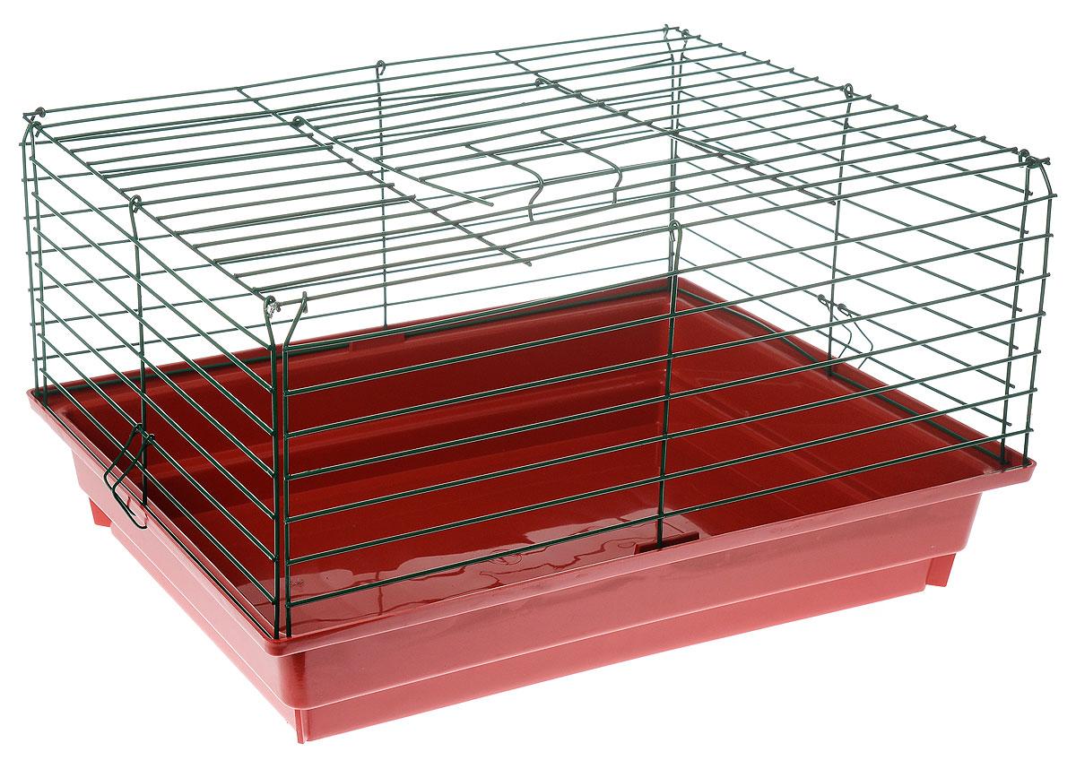 Клетка для кролика ЗооМарк, цвет: красный поддон, зеленая решетка, 50 х 35 х 30 см610_красный, зеленыйКлассическая клетка ЗооМарк со сплошным дном станет уединенным личным пространством и уютным домиком для кролика. Изделие выполнено из металла и пластика. Клетка надежно закрывается на защелки. Легко чистится. Для более удобной транспортировки клетку можно сложить.