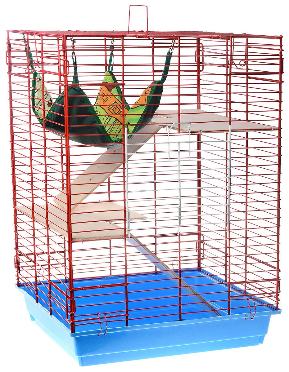 Клетка для шиншилл и хорьков ЗооМарк, цвет: голубой поддон, красная решетка, 59 х 41 х 79 см. 725дк725дк_голубой, красныйКлетка ЗооМарк, выполненная из полипропилена и металла, подходит для шиншилл и хорьков. Большая клетка оборудована длинными лестницами и гамаком. Изделие имеет яркий поддон, удобно в использовании и легко чистится. Сверху имеется ручка для переноски. Такая клетка станет уединенным личным пространством и уютным домиком для грызуна.