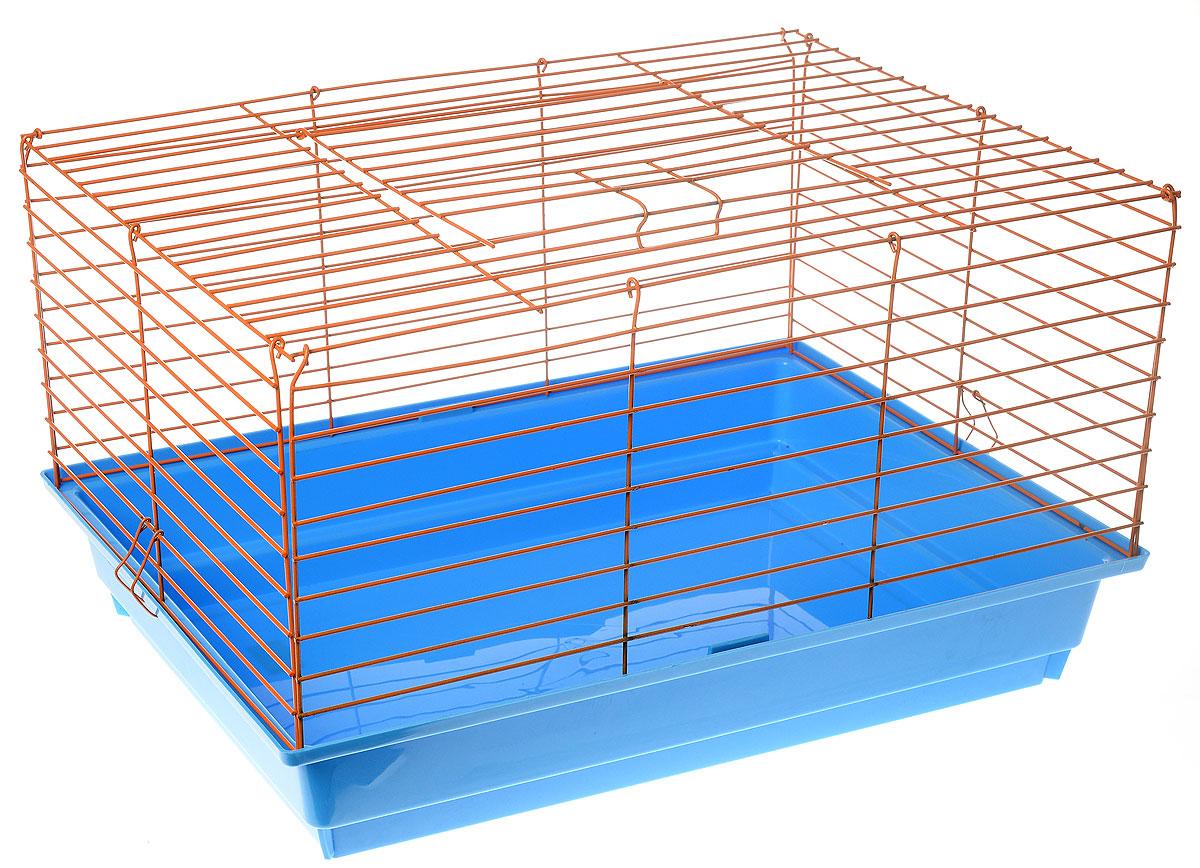 Клетка для кролика ЗооМарк, цвет: голубой поддон, оранжевая решетка, 60 х 40 х 35 см620_голубой, оранжевыйКлассическая клетка ЗооМарк со сплошным дном станет уединенным личным пространством и уютным домиком для кролика. Изделие выполнено из металла и пластика. Клетка надежно закрывается на защелки. Легко чистится. Для более удобной транспортировки клетку можно сложить.