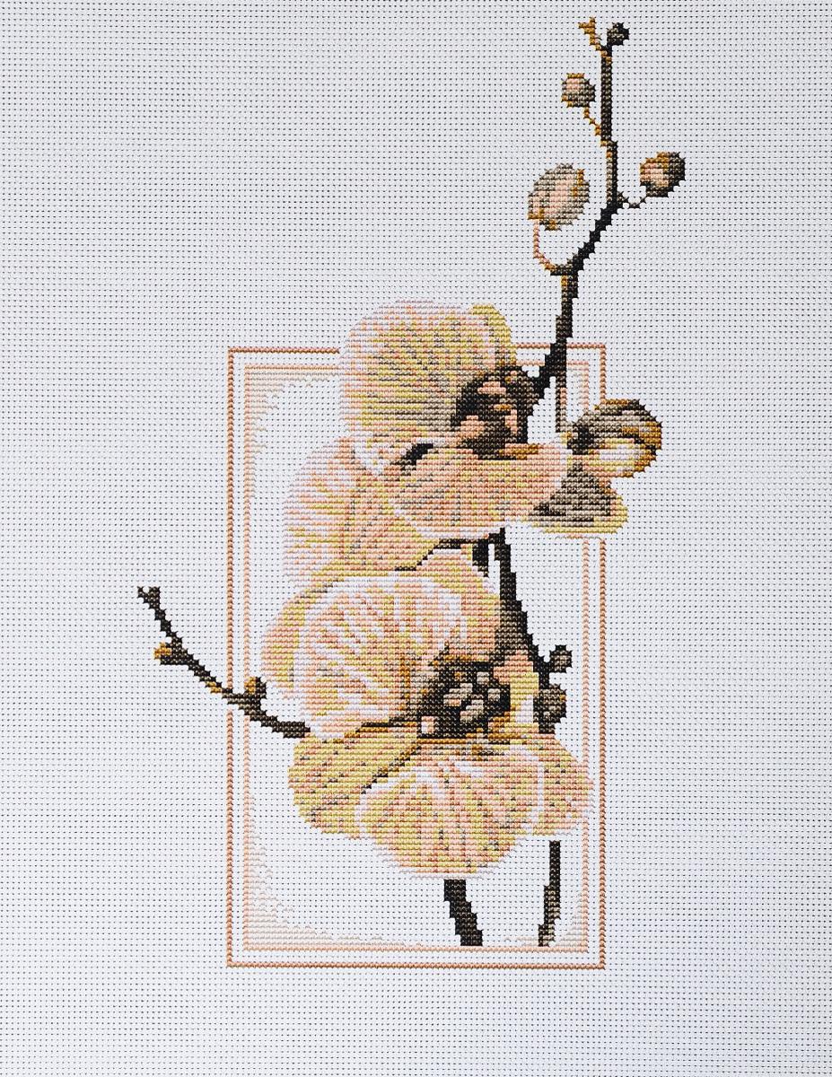 Набор для вышивания крестом Luca-S Oрхидеи, 14 х 24 смB288Набор для вышивания крестом Luca-S Орхидеи поможет создать красивую вышитую картину. Рисунок-вышивка, выполненный на канве, выглядит стильно и модно. Вышивание отвлечет вас от повседневных забот и превратится в увлекательное занятие! Работа, сделанная своими руками, не только украсит интерьер дома, придав ему уют и оригинальность, но и будет отличным подарком для друзей и близких! Набор содержит все необходимые материалы для вышивки на канве в технике счетный крест. В набор входит: - канва Aida 18 Zweigart (белого цвета), - нитки мулине Anchor - 100% мерсеризованный хлопок (15 цветов), - черно-белая символьная схема, - инструкция на русском языке, - игла.