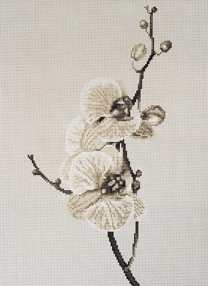 Набор для вышивания крестом Luca-S Oрхидея, 14 х 27,5 смB291Набор для вышивания крестом Luca-S Oрхидея поможет создать красивую вышитую картину. Рисунок-вышивка, выполненный на канве, выглядит стильно и модно. Вышивание отвлечет вас от повседневных забот и превратится в увлекательное занятие! Работа, сделанная своими руками, не только украсит интерьер дома, придав ему уют и оригинальность, но и будет отличным подарком для друзей и близких! Набор содержит все необходимые материалы для вышивки на канве в технике счетный крест. В набор входит: - канва Aida 18 Zweigart (молочного цвета), - нитки мулине Anchor - 100% мерсеризованный хлопок (12 цветов), - черно-белая символьная схема, - инструкция на русском языке, - игла.