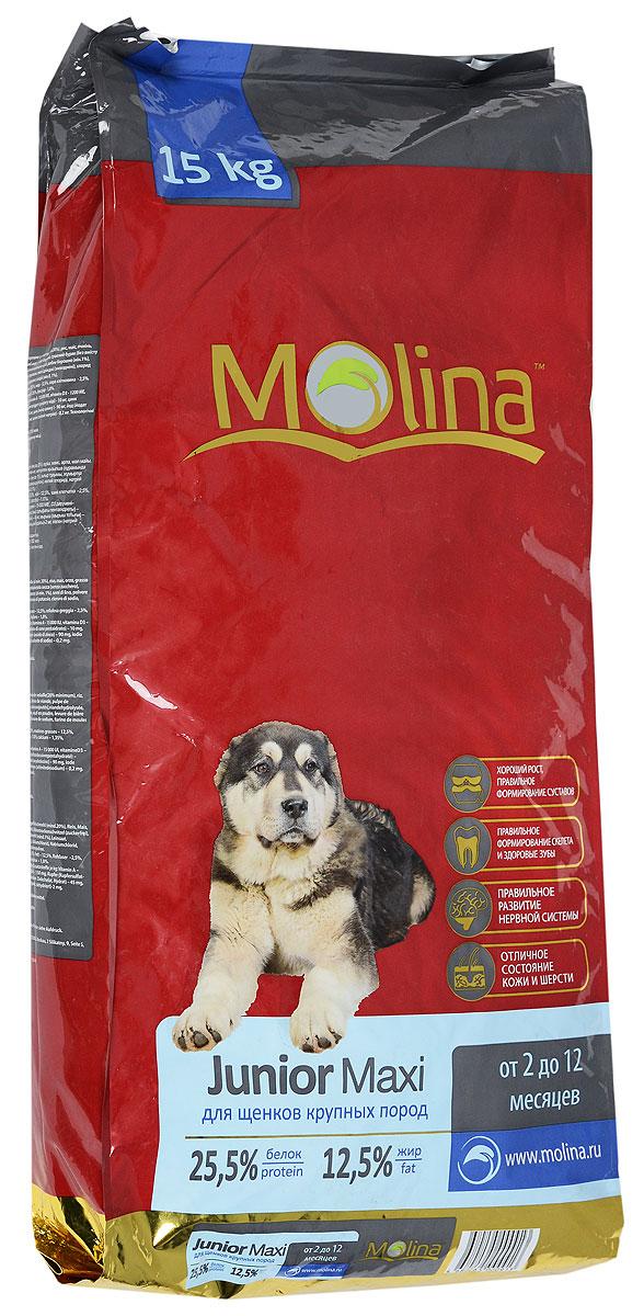 Корм сухой Molina Junior Maxi для щенков крупных пород, 15 кг4680265000913Полнорационный сухой корм Molina Junior Medium предназначен для щенков крупных пород возрастом от 2 до12 месяцев. Оптимальное содержание кальция и фосфора обеспечивает правильное формирование скелета и здоровье зубов. Баланс макроэлементов и микроэлементов способствует развитию роста и правильному формированию суставов. Специальный комплекс витаминов и антиоксидантов укрепляет иммунитет. Товар сертифицирован.