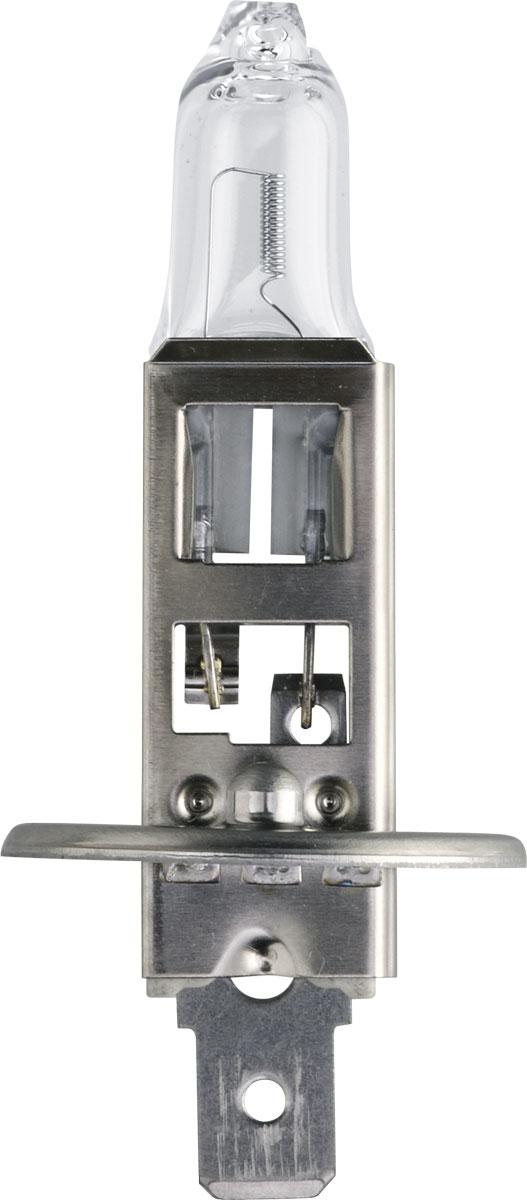 Лампа автомобильная галогенная Philips MasterLife, для фар, цоколь H1 (P14,5s), 24V, 70W13258MLC1Галогенная лампа для автомобильных фар Philips MasterLife произведена из запатентованного кварцевого стекла с УФ фильтром Philips Quartz Glass. Кварцевое стекло Philips в отличие от обычного твердого стекла выдерживает гораздо большее давление смеси газов внутри колбы, что препятствует быстрому испарению вольфрама с нити накаливания. Кварцевое стекло выдерживает большой перепад температур, при попадании влаги на работающую лампу изделие не взрывается и продолжает работать. Лампы MasterLife служат до 4 раз дольше, выдерживая экстремальные нагрузки и вибрацию. MasterLife обладает максимальным сроком службы из всех предложений на рынке, эти лампы для головного освещения работают до 4-х раз дольше обычных, благодаря новому составу газов и геометрическим характеристикам нити накаливания в виде двойной спирали, которая замедляет испарение вольфрама. Они обладают такой же вибростойкостью, как и лампы MasterDuty, и отличаются максимальной прочностью и надежностью. ...