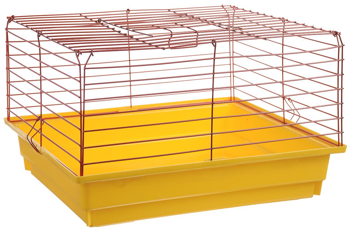 Клетка для кроликов ЗооМарк, цвет: желтый поддон, красная решетка, 59 х 40 х 35 см620_желтый, красныйКлетка для кроликов ЗооМарк, выполненная из металла и пластика, предназначена для содержания вашего любимца. Клетка имеет прямоугольную форму, очень просторна, оснащена съемным поддоном. Она очень легко собирается и разбирается. Такая клетка станет для вашего питомца уютным домиком и надежным убежищем.