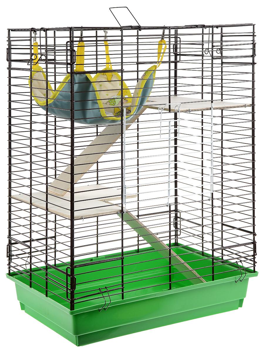 Клетка для шиншилл и хорьков ЗооМарк, цвет: зеленый поддон, коричневая решетка, 59 х 41 х 79 см. 725дк725дк_зеленый, коричневыйКлетка ЗооМарк, выполненная из полипропилена и металла, подходит для шиншилл и хорьков. Большая клетка оборудована длинными лестницами и гамаком. Изделие имеет яркий поддон, удобно в использовании и легко чистится. Сверху имеется ручка для переноски. Такая клетка станет уединенным личным пространством и уютным домиком для грызуна.