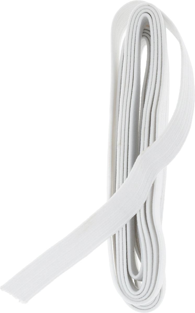 Резинка бельевая Pony, цвет: белый, 1,2 х 200 см53107Резинка бельевая Pony - это плоская эластичная лента, которая производится из латексных нитей в оплетке из полиэфирных волокон. Резинка хорошо тянется, используется при пошиве одежды.