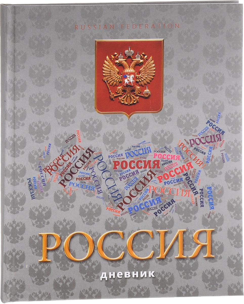 Апплика Дневник школьный Российская символика - 9