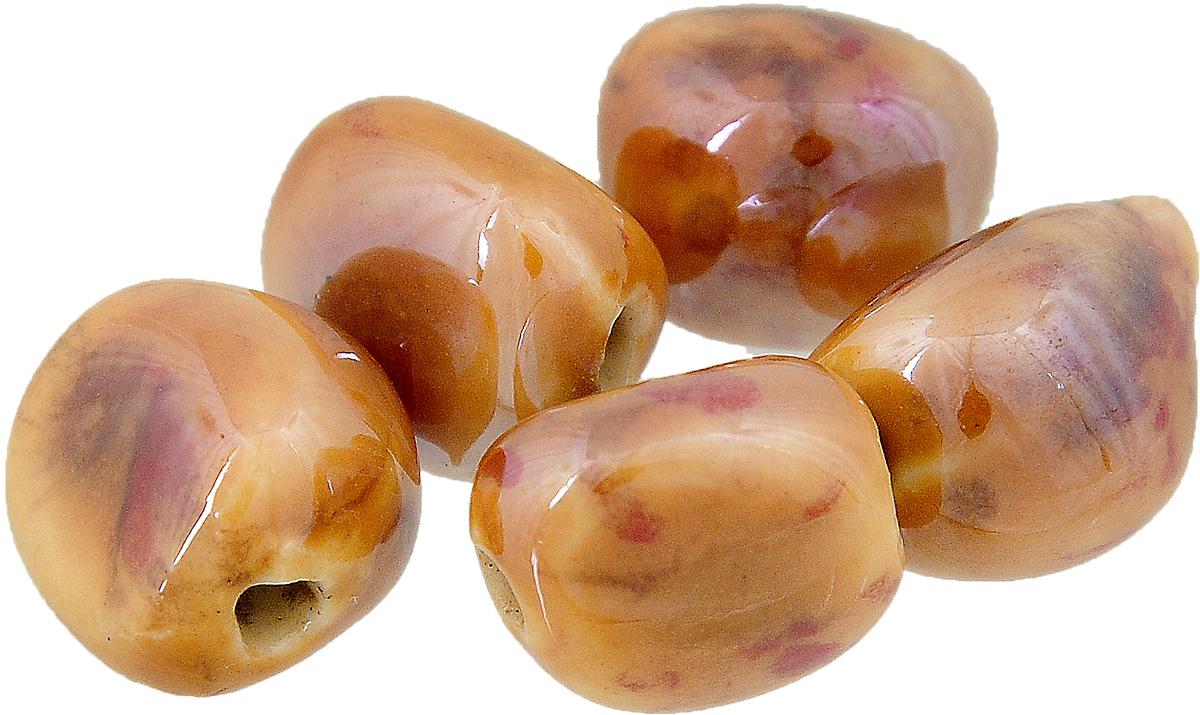 Набор бусин Tesоro, цвет: темно-красный, коричневый (20), 10 х 14 мм, 5 штБУС.КЕРАМ.TS.324.20Набор бусин Tesоro, изготовленный из керамики, позволит вам своими руками создать оригинальные ожерелья, бусы или браслеты. Бусины имеют многогранную форму яркой окраски. Изготовление украшений - занимательное хобби и реализация творческих способностей рукодельницы, это возможность создания неповторимого индивидуального подарка. Размер бусины: 10 х 14 мм.