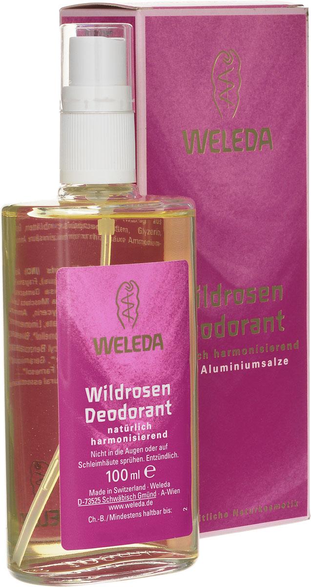 Weleda Розовый дезодорант, 100 мл8808Нежный цветочный аромат создан на основе чистейших эфирных масел. Ноты иланг-иланга и дамасской розы воплощают образ женственности и гармонизируют гамму ощущений. Комплекс экстрактов и эфирных масел создает приятное ощущение свежести. Благодаря особой растительной формуле 100% натуральный дезодорант предотвращает размножение бактерий и появление неприятного запаха, не закупоривая поры. Обеспечивает бережный уход и защиту, поддерживая естественные регулирующие функции кожи. Не оставляет следов на одежде. Не содержит солей алюминия, парабенов и фталатов, синтетических ароматизаторов, красителей, консервантов и компонентов животного происхождения. Неаэрозольный спрей в стеклянном флаконе. Способ применения: распылять дезодорант на расстоянии 10-15 см на сухую и чистую кожу подмышечных впадин. При необходимости в течение дня можно наносить повторно.