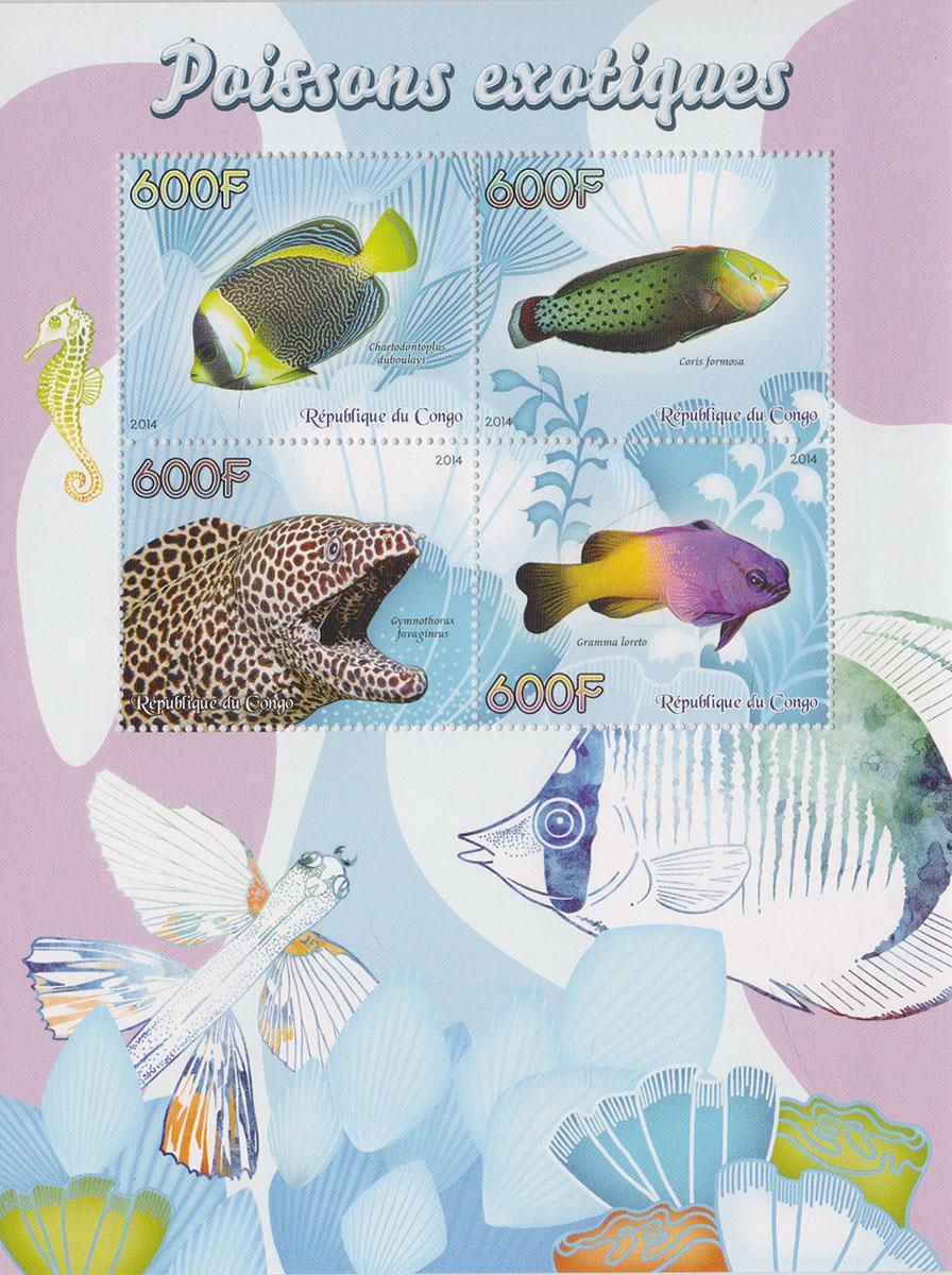 Малый лист Экзотические рыбы. Конго, 2014 годМКСПБ 37-2016.23Малый лист Экзотические рыбы. Конго, 2014 год. Размер листа: 12.5 х 16.5 см. Размер марок: 3.7 х 4.7 см. Сохранность хорошая.