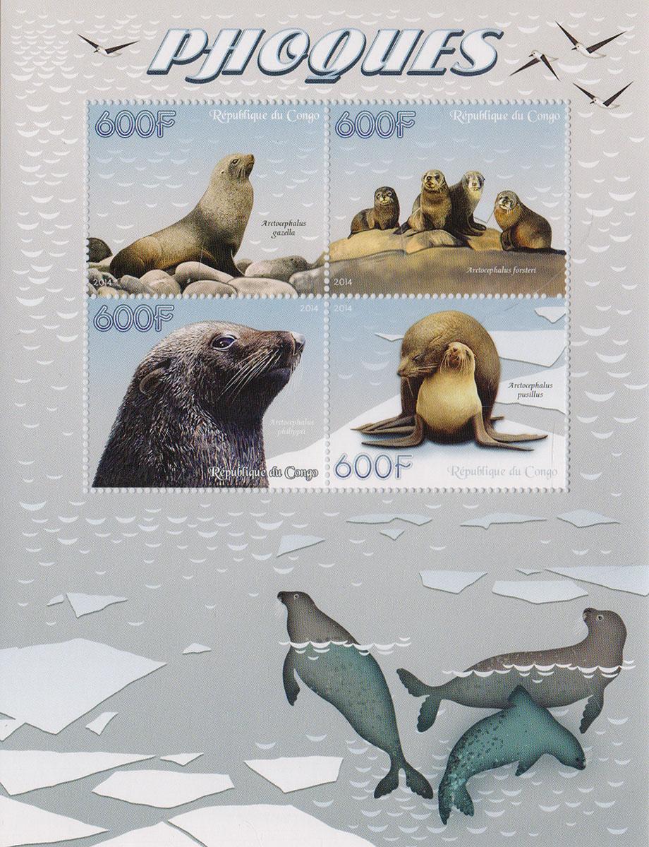 37 Малый лист Тюлени. Конго, 2014 годМКСПБ 37-2016.37