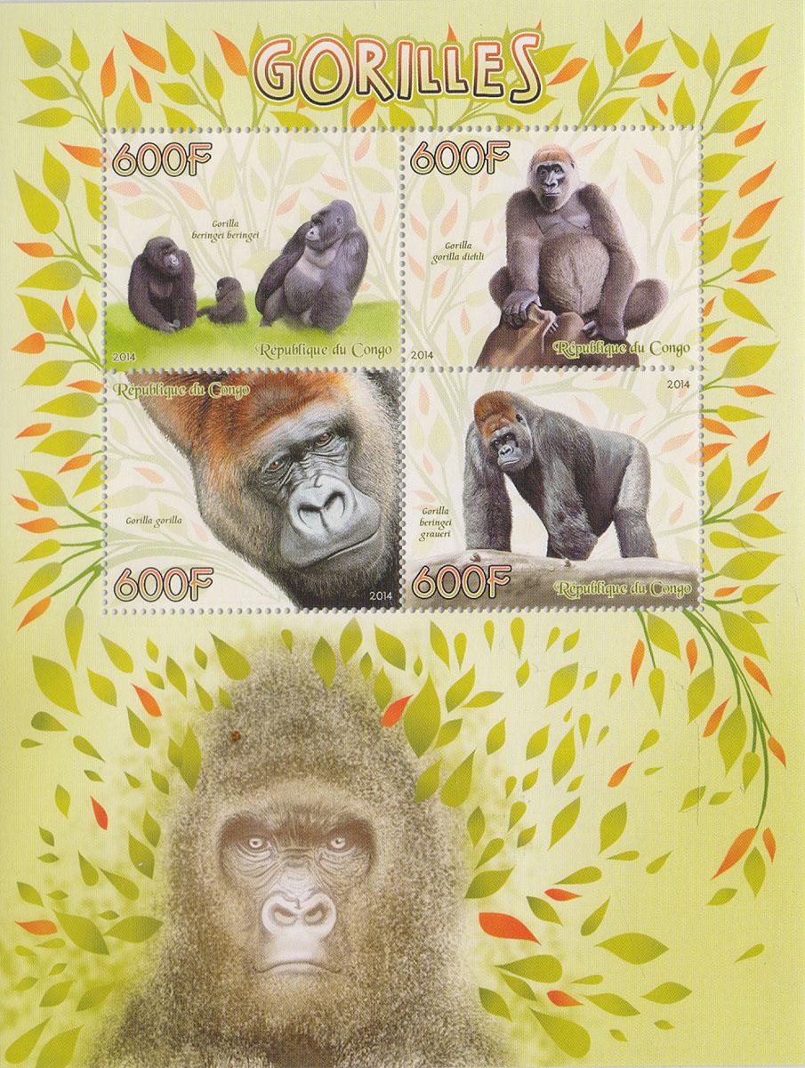 Малый лист Гориллы. Конго, 2014 годМКСПБ 37-2016.14Малый лист Гориллы. Конго, 2014 год. Размер листа: 12.5 х 16.5 см. Размер марок: 3.7 х 4.7 см. Сохранность хорошая.