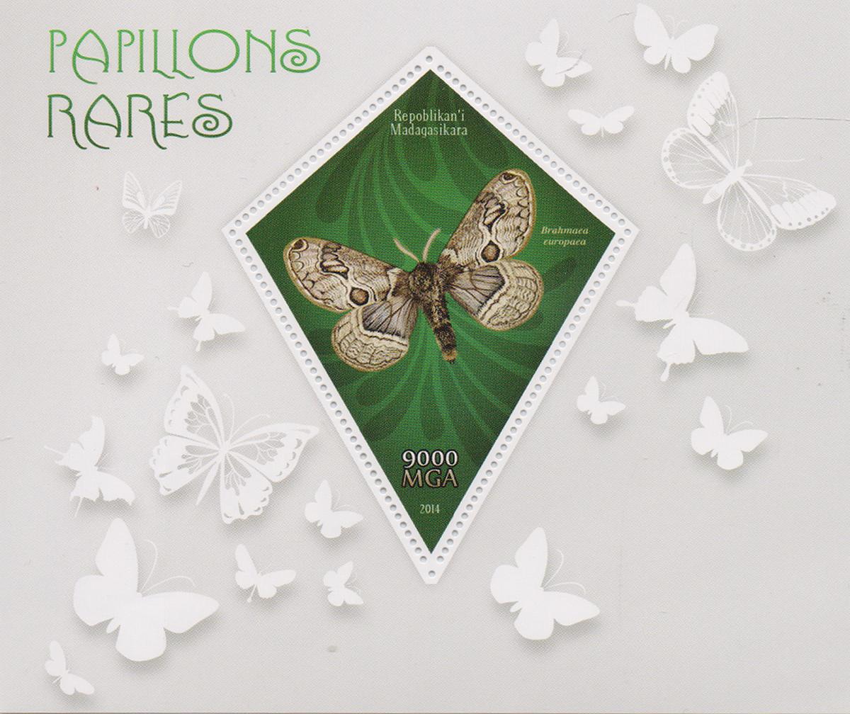 Почтовый блок Редкие бабочки. Мадагаскар, 2014 годМКСПБ 38-2016.33Почтовый блок Редкие бабочки. Мадагаскар, 2014 год. Размер блока: 11 х 13 см. Размер марки: 8 х 6 см. Сохранность хорошая.