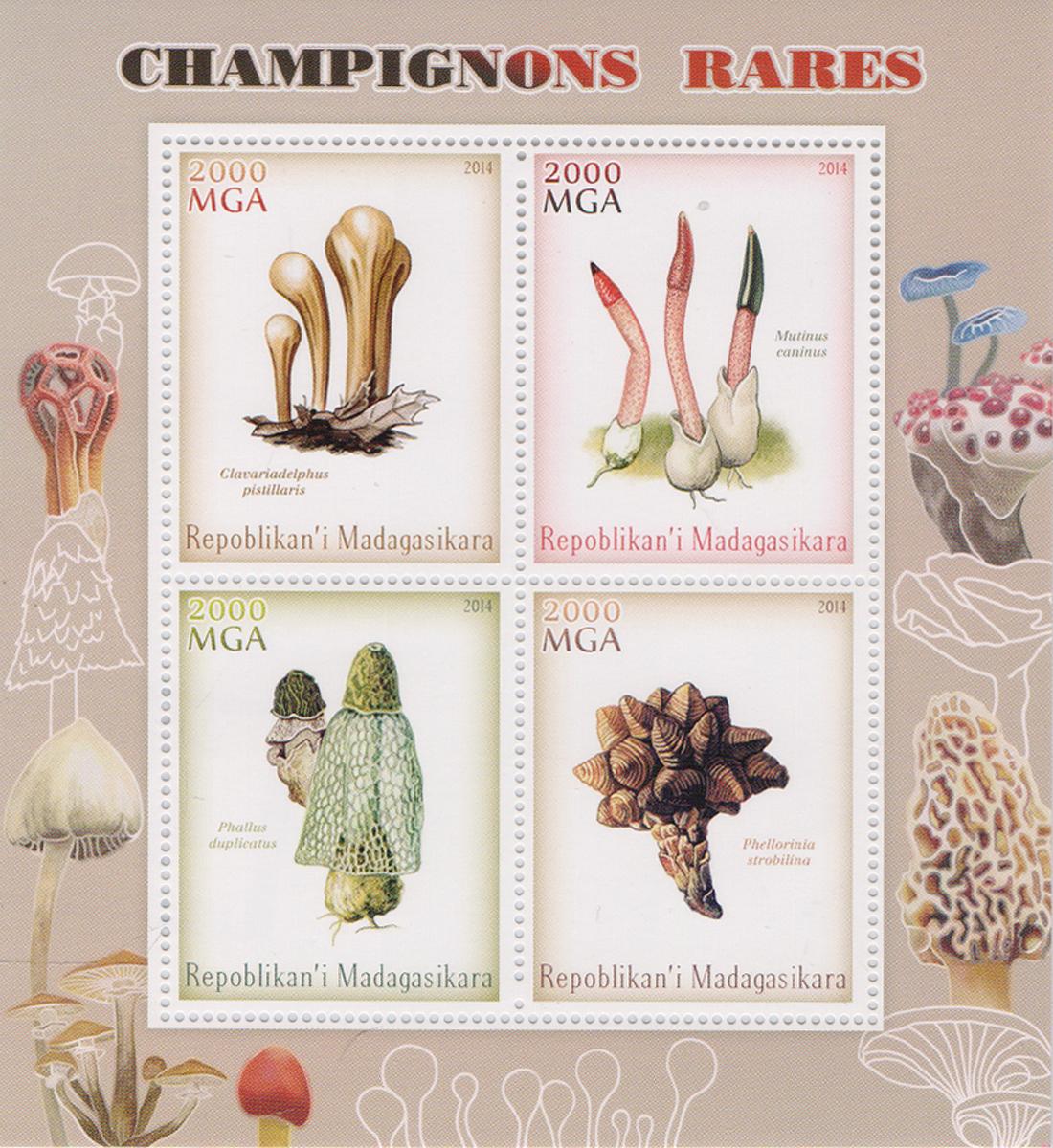 Почтовый блок на 4 марки Редкие грибы. Мадагаскар, 2014 годМКСПБ 38-2016.49Почтовый блок на 4 марки Редкие грибы. Мадагаскар, 2014 год. Размер блока: 11.2 х 12 см. Размер марок: 3.7 х 4.7 см. Сохранность хорошая.