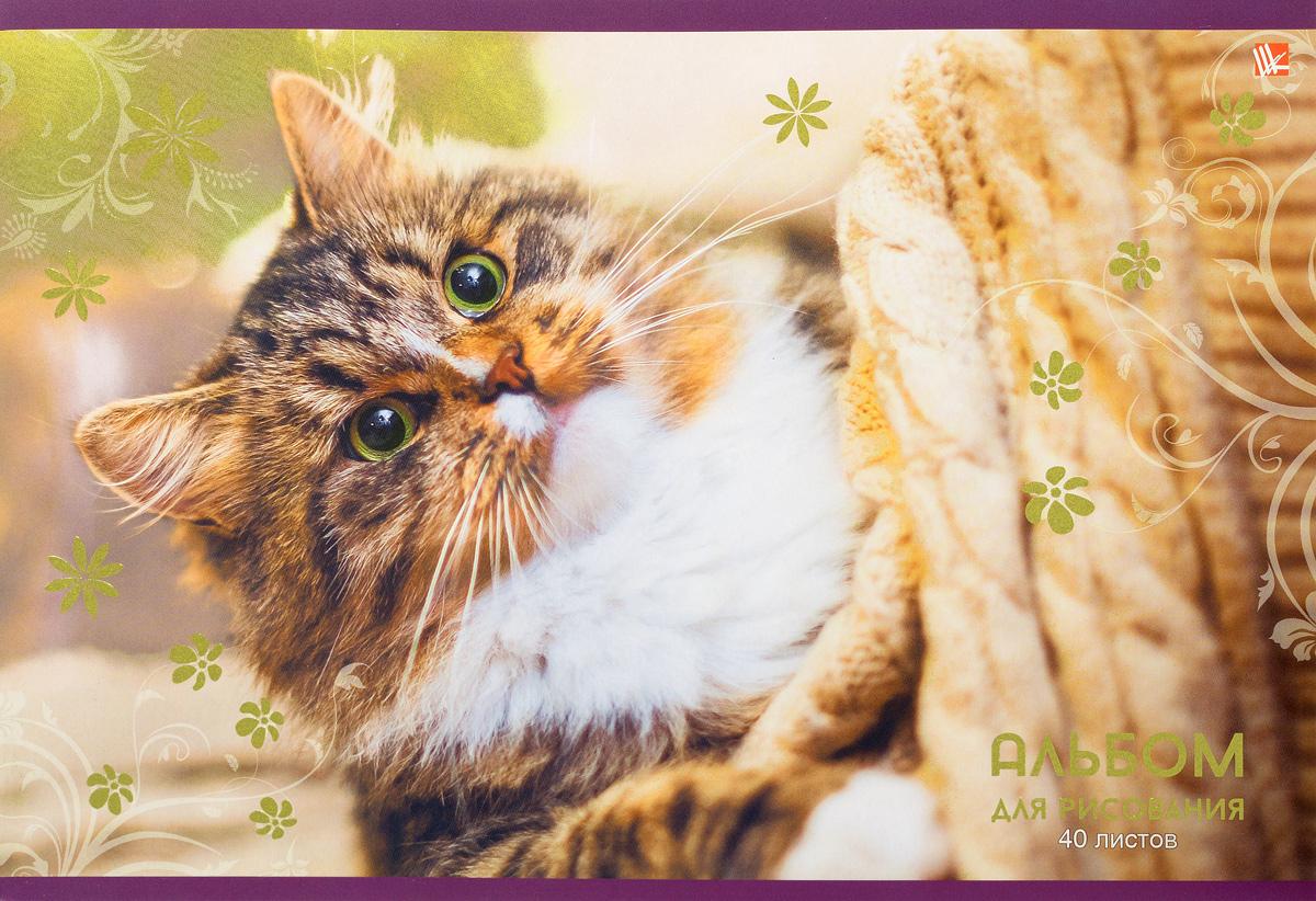 Listoff Альбом для рисования Уютный кот 40 листов АФ401363