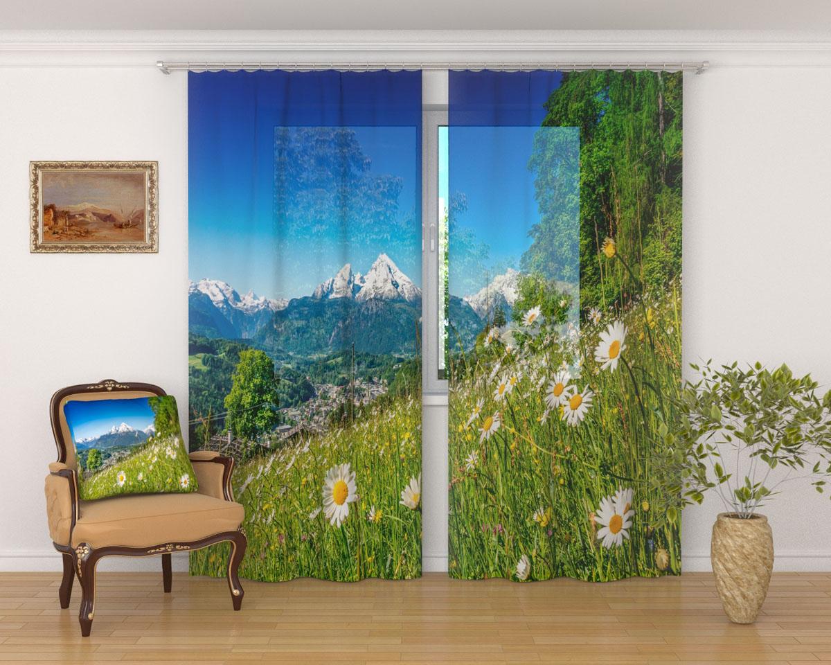 Комплект фототюлей Сирень Альпийские травы, на ленте, высота 260 см03416-ФТ-ВЛ-001Фототюль Сирень Альпийские травы из легкой парящей ткани - вуали - благодаря своей прозрачности позволяет создать в комнате уютную атмосферу, отлично дополняет украшение любого окна. Ткань хорошо держит форму, не требует специального ухода. Яркая и чёткая картинка будет радовать вас каждый день. Крепление на карниз при помощи шторной ленты на крючки. В комплекте: 2 тюля. Ширина полотна: 145 см. Высота полотна: 260 см. Рекомендации по уходу: стирка при 30 градусах, гладить при температуре до 110 градусов. Изображение на мониторе может немного отличаться от реального.