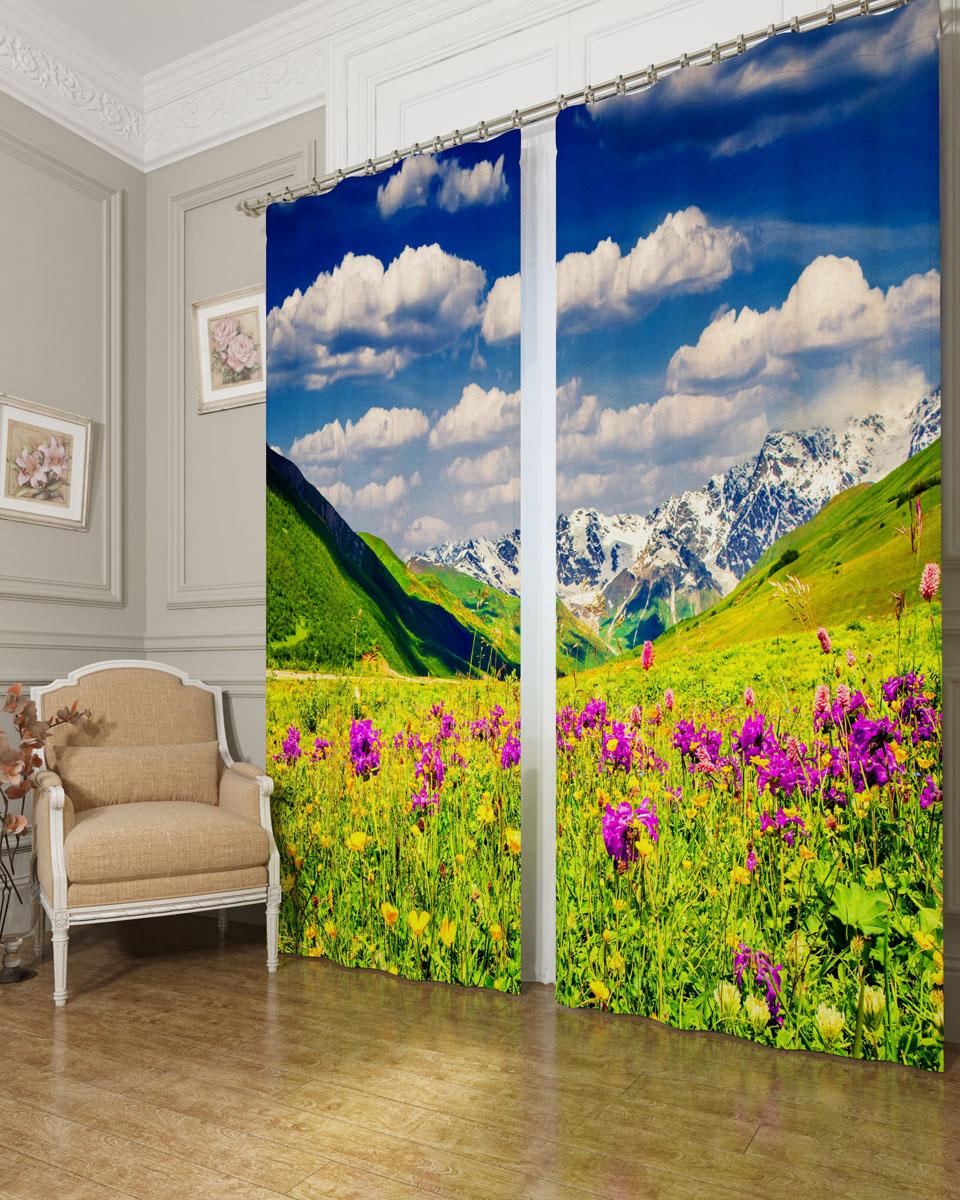 Комплект фотоштор Сирень Альпы и цветы, на ленте, высота 260 см03477-ФШ-БЛ-001Фотошторы Сирень Альпы и цветы, выполненные из блэкаута, отлично дополнят украшение любого интерьера. Блэкаут - это трехслойная светонепроницаемая ткань - 100% полиэстер, по структуре напоминает плотный хлопок, очень мягкий,с небольшим сероватым оттенком из-за черной нити, входящей в состав ткани. Блэкаут не требует особого ухода, хорошо драпируется. Пропускает солнечные лучи не более 5%. Крепление на карниз при помощи шторной ленты на крючки. В комплекте 2 шторы. Ширина одного полотна: 145 см. Высота штор: 260 см. Рекомендации по уходу: стирка при 30 градусах, гладить при температуре до 110 градусов. Изображение на мониторе может немного отличаться от реального.