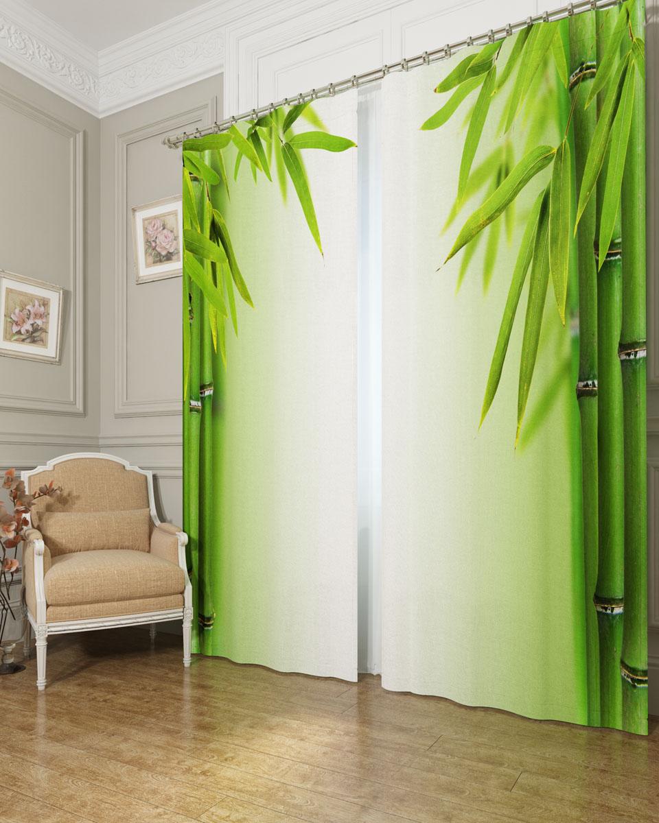 Комплект фотоштор Сирень Листья бамбука, на ленте, высота 260 см03901-ФШ-БЛ-001Фотошторы Сирень Листья бамбука, выполненные из блэкаута, отлично дополнят украшение любого интерьера. Блэкаут - это трехслойная светонепроницаемая ткань - 100% полиэстер, по структуре напоминает плотный хлопок, очень мягкий,с небольшим сероватым оттенком из-за черной нити, входящей в состав ткани. Блэкаут не требует особого ухода, хорошо драпируется. Пропускает солнечные лучи не более 5%. Крепление на карниз при помощи шторной ленты на крючки. В комплекте 2 шторы. Ширина одного полотна: 145 см. Высота штор: 260 см. Рекомендации по уходу: стирка при 30 градусах, гладить при температуре до 110 градусов. Изображение на мониторе может немного отличаться от реального.