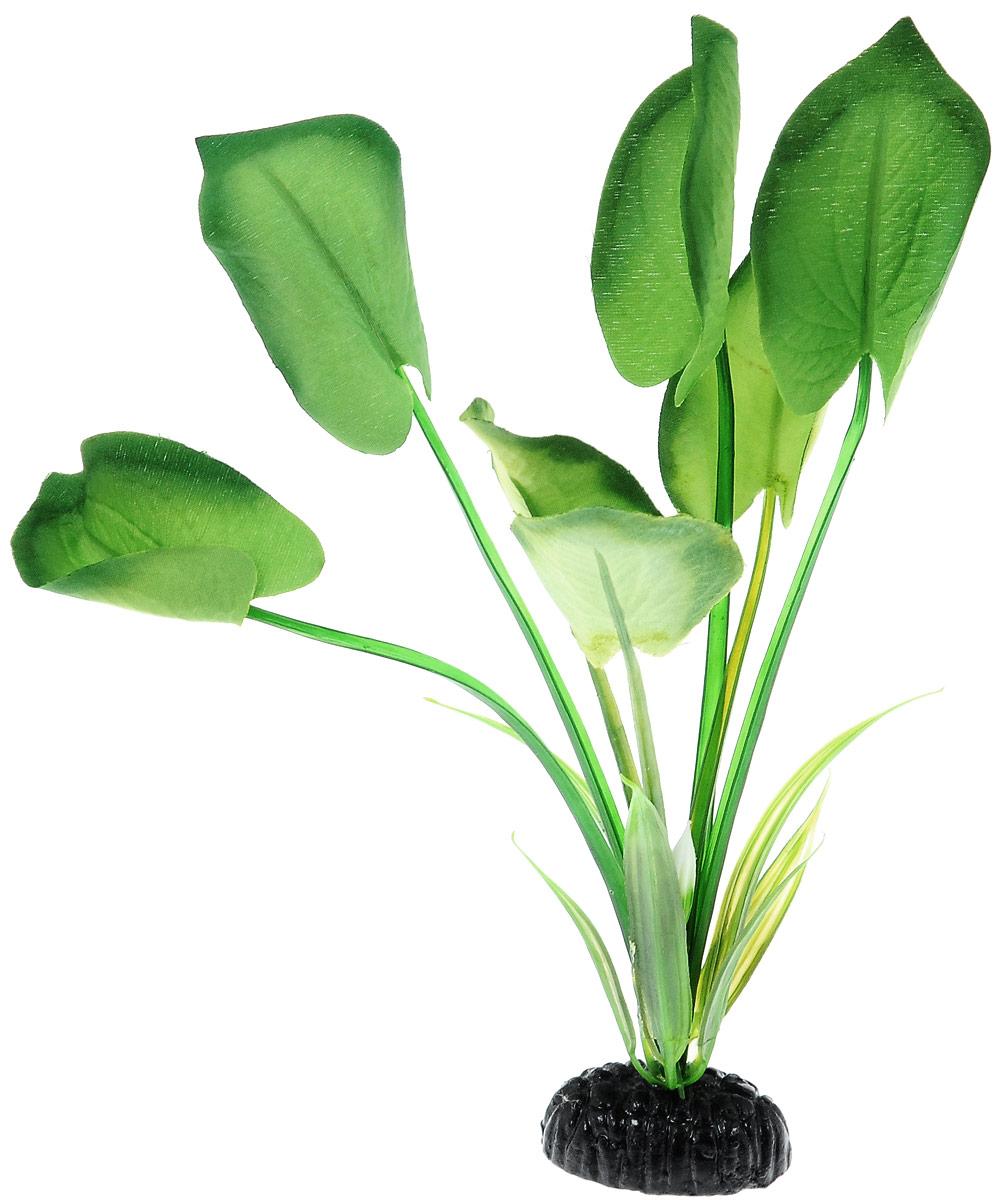 Растение для аквариума Barbus Эхинодорус, шелковое, высота 20 см. Plant 044/20Plant 044/20Растение для аквариума Barbus Эхинодорус, выполненное из высококачественного нетоксичного пластика и шелка, станет прекрасным украшением вашего аквариума. Шелковое растение идеально подходит для дизайна всех видов аквариумов. В воде происходит абсолютная имитация живых растений. Изделие не требует дополнительного ухода и просто в применении. Растение абсолютно безопасно, нейтрально к водному балансу, устойчиво к истиранию краски, подходит как для пресноводного, так и для морского аквариума. Растение для аквариума Barbus Эхинодорус поможет вам смоделировать потрясающий пейзаж на дне вашего аквариума или террариума.