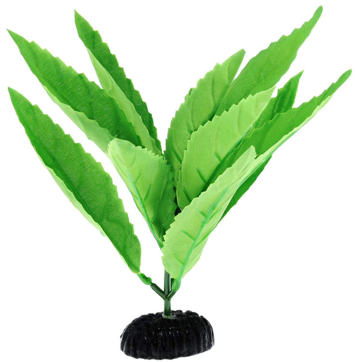 Растение для аквариума Barbus Гигрофила, шелковое, высота 20 смPlant 052/20Растение для аквариума Barbus Гигрофила, выполненное из высококачественного нетоксичного пластика и шелка, станет прекрасным украшением вашего аквариума. Шелковое растение идеально подходит для дизайна всех видов аквариумов. В воде происходит абсолютная имитация живых растений. Изделие не требует дополнительного ухода и просто в применении. Растение абсолютно безопасно, нейтрально к водному балансу, устойчиво к истиранию краски, подходит как для пресноводного, так и для морского аквариума. Растение для аквариума Barbus Гигрофила поможет вам смоделировать потрясающий пейзаж на дне вашего аквариума или террариума.