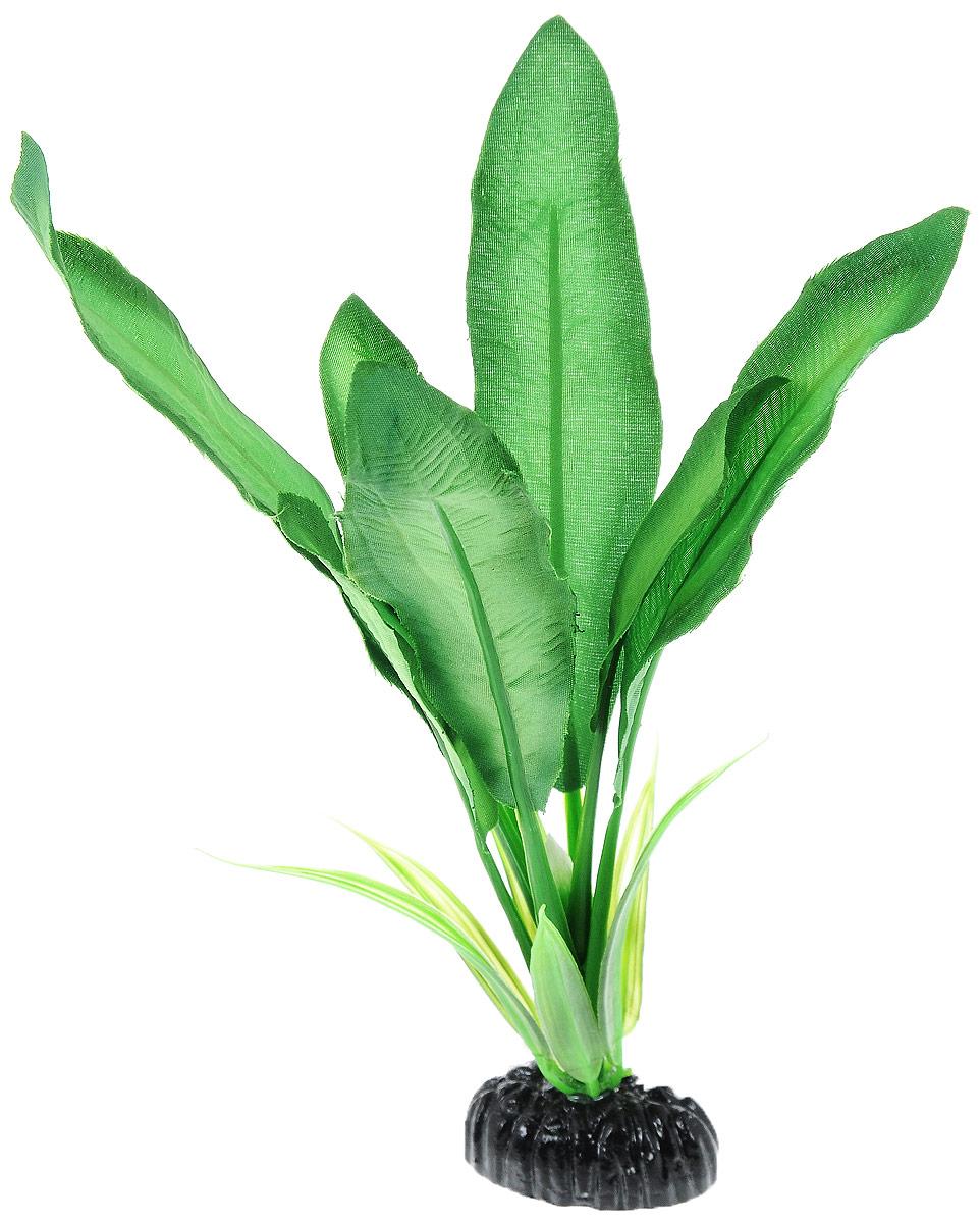 Растение для аквариума Barbus Эхинодорус Майор, шелковое, высота 20 смPlant 046/20Растение для аквариума Barbus Эхинодорус Майор, выполненное из высококачественного нетоксичного пластика и шелка, станет прекрасным украшением вашего аквариума. Шелковое растение идеально подходит для дизайна всех видов аквариумов. В воде происходит абсолютная имитация живых растений. Изделие не требует дополнительного ухода и просто в применении. Растение абсолютно безопасно, нейтрально к водному балансу, устойчиво к истиранию краски, подходит как для пресноводного, так и для морского аквариума. Растение для аквариума Barbus Эхинодорус Майор поможет вам смоделировать потрясающий пейзаж на дне вашего аквариума или террариума.