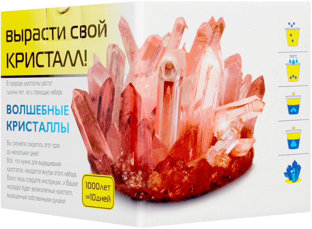 Каррас Волшебные кристаллы цвет янтарный004_янтарныйВ природе кристаллы растут тысячи лет, но с помощью набора «Волшебные кристаллы» Вы сможете сократить этот срок до нескольких дней! Все, что нужно для выращивания кристалла, находится внутри этого набора. Всего лишь следуйте инструкции, и Вашей наградой будет великолепный кристалл, выращенный собственными руками!