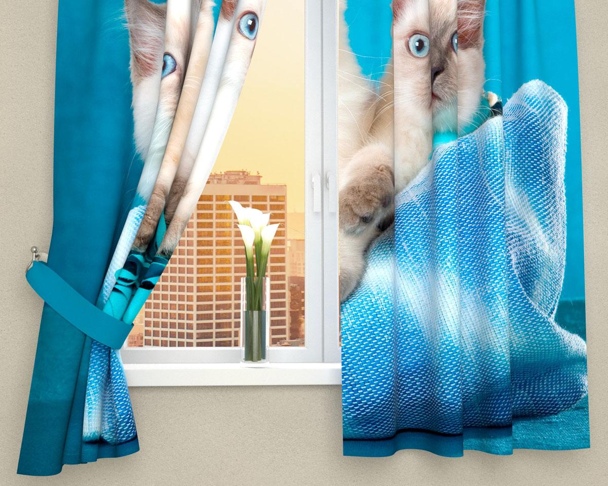 Комплект фотоштор Сирень Три котенка, на ленте, высота 160 см01493-ФК-ГБ-002Фотошторы для кухни Сирень Три котенка, выполненные из габардина (100% полиэстера), отлично дополнят украшение любого интерьера. Особенностью ткани габардин является небольшая плотность, из-за чего ткань хорошо пропускает воздух и солнечный свет. Ткань хорошо держит форму, не требует специального ухода. Крепление на карниз при помощи шторной ленты на крючки. В комплекте 2 шторы. Ширина одного полотна: 145 см. Высота штор: 160 см. Рекомендации по уходу: стирка при 30 градусах, гладить при температуре до 110 градусов. Изображение на мониторе может немного отличаться от реального. Подхваты в комплект не входят.