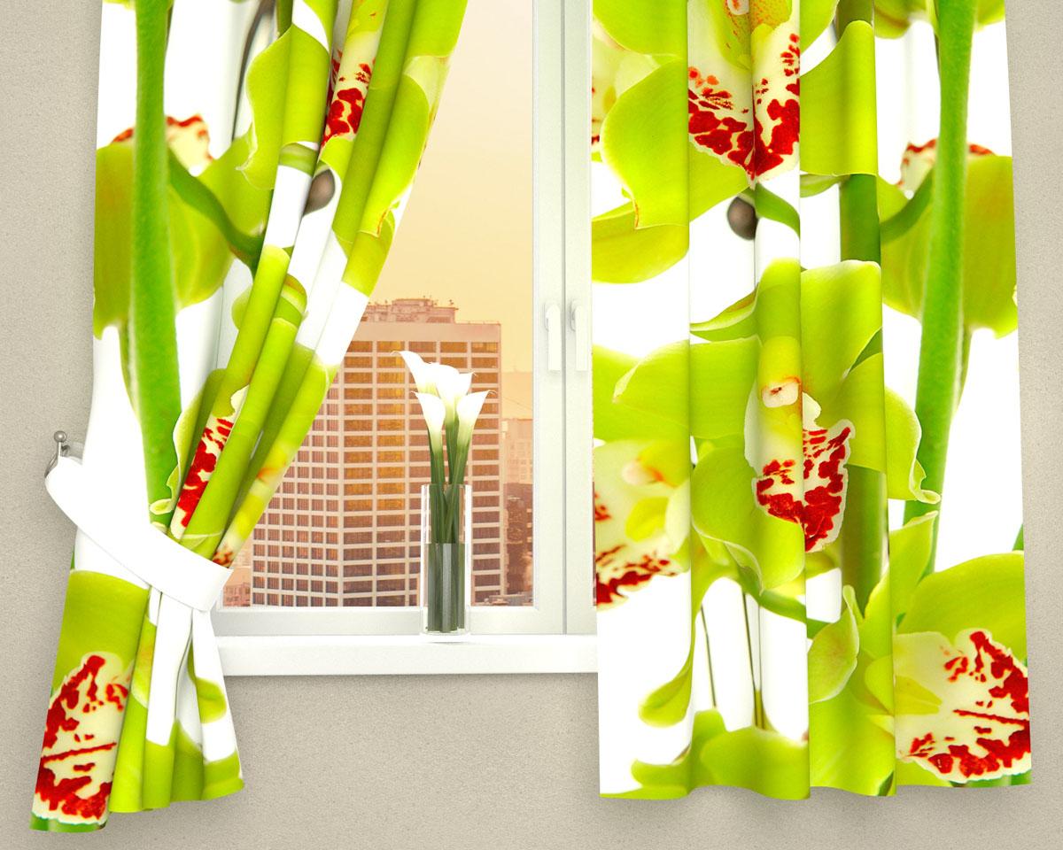 Комплект фотоштор Сирень Зеленая орхидея, на ленте, высота 160 см03569-ФК-ГБ-002Фотошторы для кухни Сирень Зеленая орхидея, выполненные из габардина (100% полиэстера), отлично дополнят украшение любого интерьера. Особенностью ткани габардин является небольшая плотность, из-за чего ткань хорошо пропускает воздух и солнечный свет. Ткань хорошо держит форму, не требует специального ухода. Крепление на карниз при помощи шторной ленты на крючки. В комплекте 2 шторы. Ширина одного полотна: 145 см. Высота штор: 160 см. Рекомендации по уходу: стирка при 30 градусах, гладить при температуре до 110 градусов. Изображение на мониторе может немного отличаться от реального. Подхваты в комплект не входят.