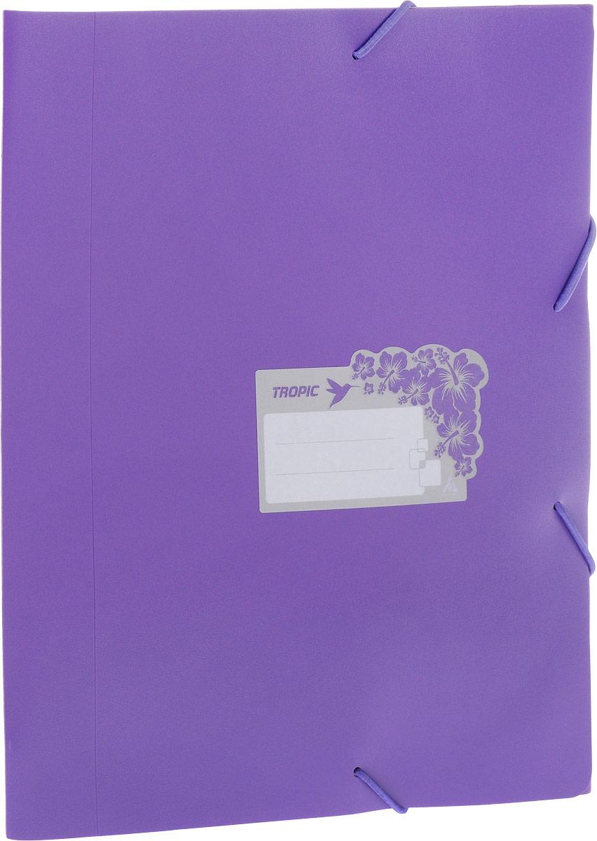 Бюрократ Папка-короб на резинке Tropic формат А4 цвет фиолетовый