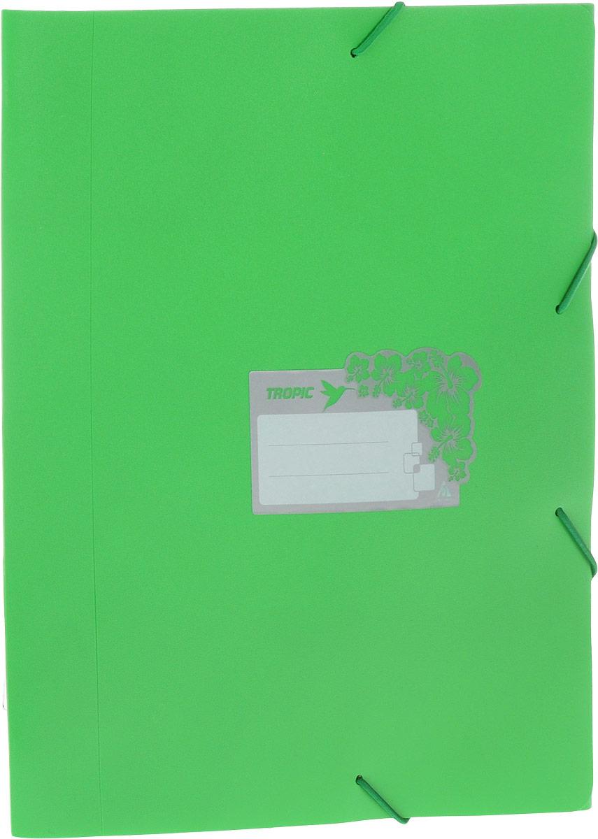 Бюрократ Папка-короб на резинке Tropic формат А4 цвет зеленый816254Папка-короб на резинке Tropic - это удобный и функциональный офисный инструмент, предназначенный для хранения и транспортировки большого объема рабочих бумаг и документов формата А4. На лицевой стороне папки имеется место для ФИО владельца, оформленное рисунком с тропическими цветами. Папка изготовлена из жесткого, но гибкого фактурного пластика и закрывается при помощи угловых резинок. Резинки не позволят папке раскрыться в неподходящий момент. Папка надежно сохранит ваши документы и сбережет их от повреждений, пыли и влаги.