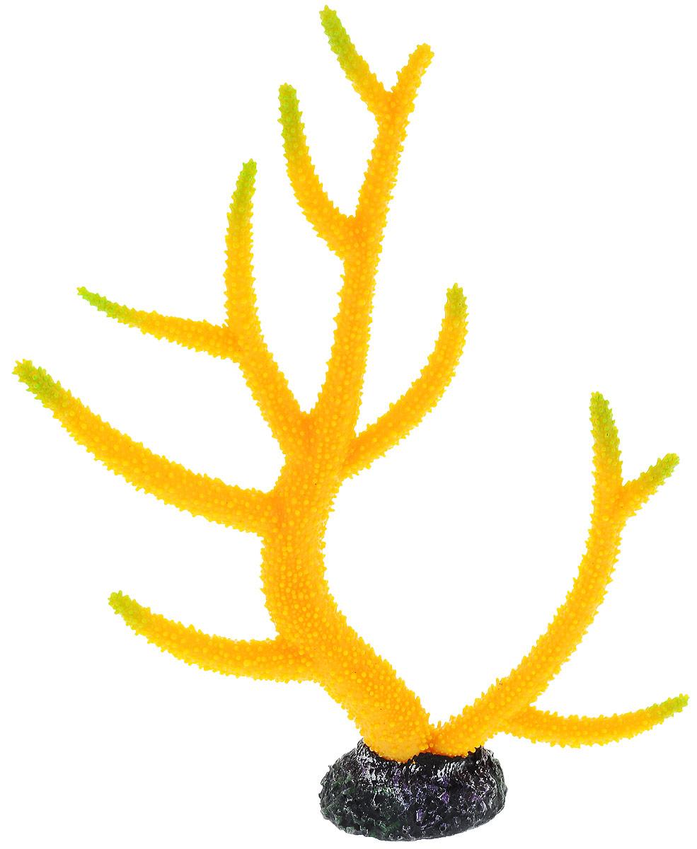 Декорация для аквариума Barbus Коралл, цвет: желтый, зеленый, 26 х 6,4 х 33,5 смDecor 262Декорация для аквариума Barbus Коралл, выполненная из высококачественного нетоксичного полирезина, станет прекрасным украшением вашего аквариума. Изделие отличается реалистичным исполнением с множеством мелких деталей. Декорация абсолютно безопасна, нейтральна к водному балансу, устойчива к истиранию краски, подходит как для пресноводного, так и для морского аквариума. Благодаря декорациям Barbus вы сможете смоделировать потрясающий пейзаж на дне вашего аквариума или террариума.